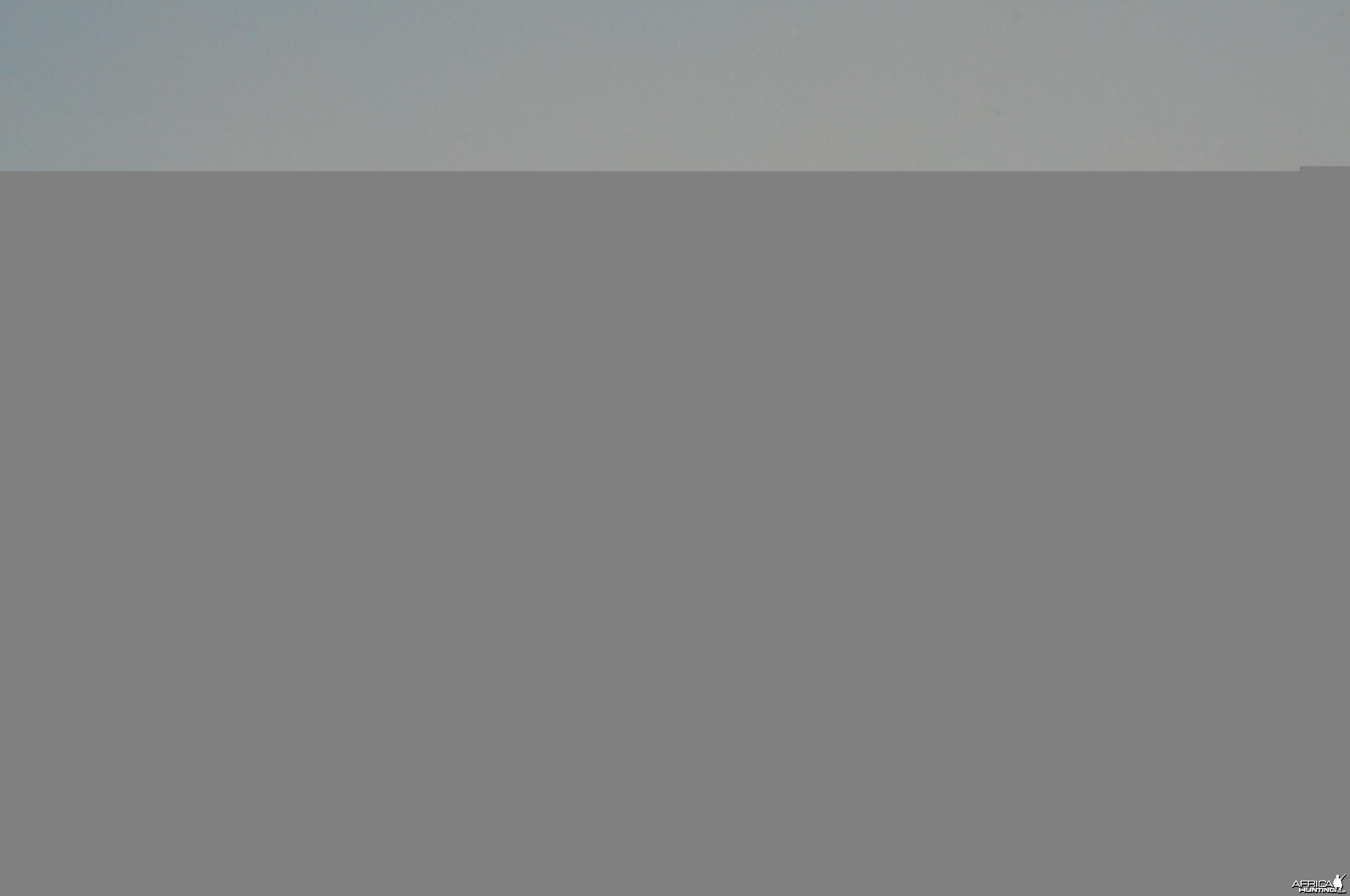 Game Capture Namibia