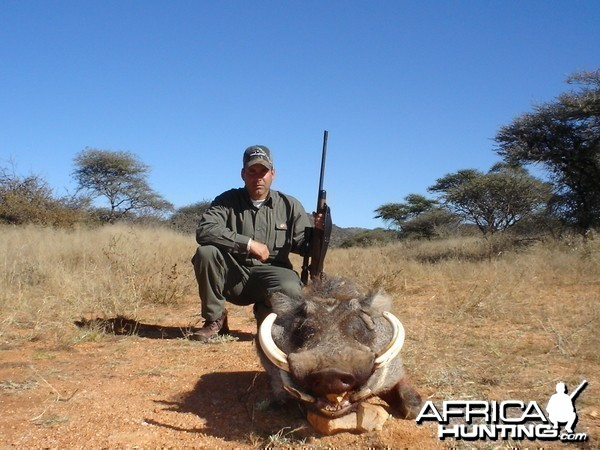 Warthog Hunting in Namibia