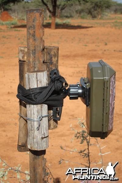 Trail Cam Set Up