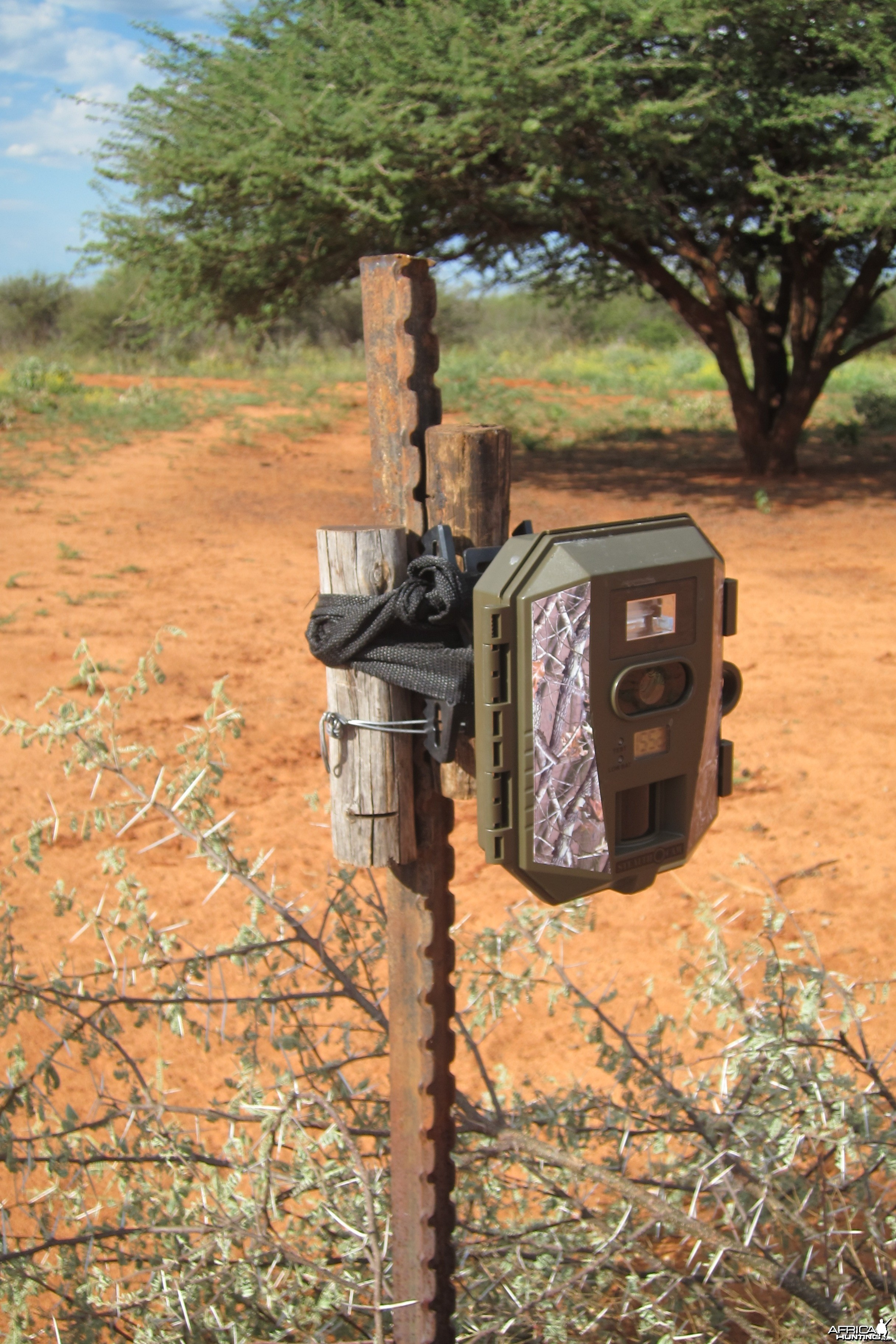 Trail Cam Set Up