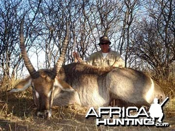 Waterbuck Hunting in Namibia