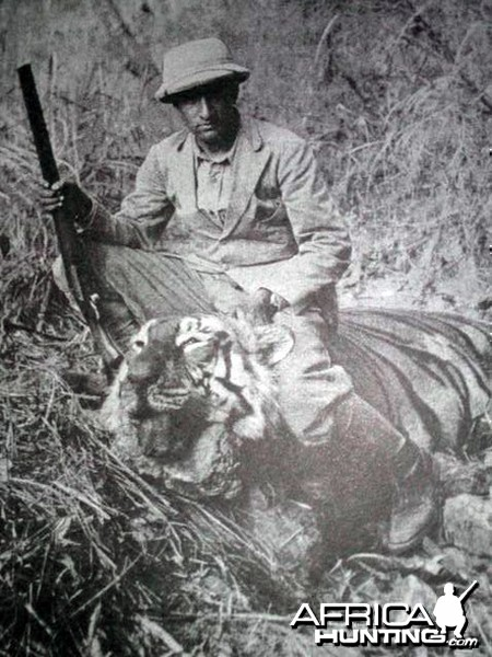 Hunting Tiger in India