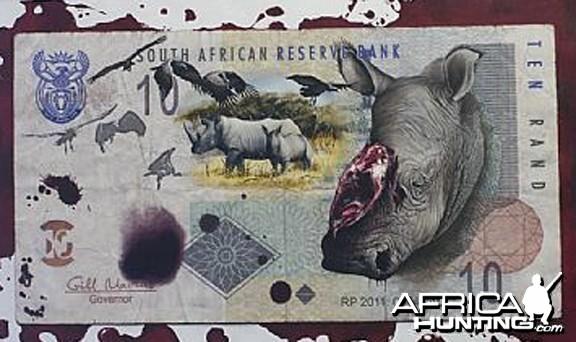 Dolfi Stoki  Rhino Poaching Painting