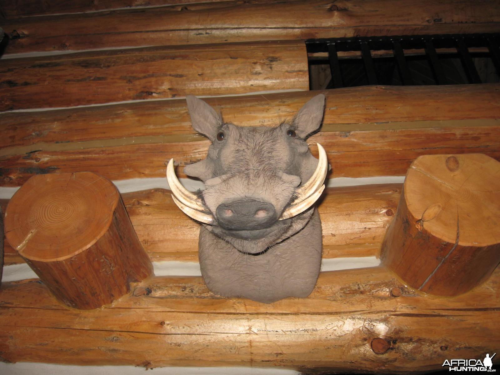 my warthog