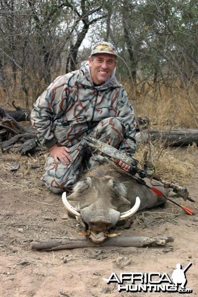 Limpopo Warthog