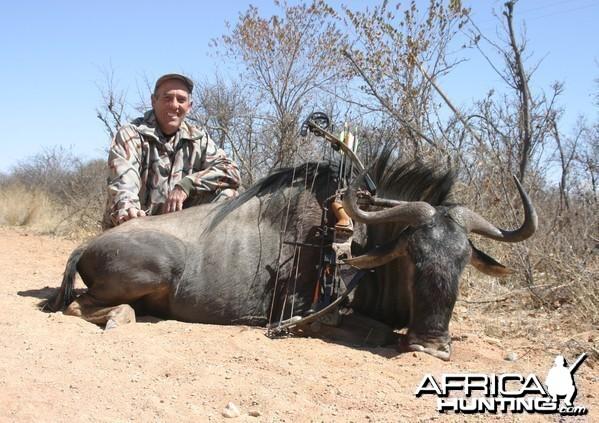 Limpopo Blue wildebeest