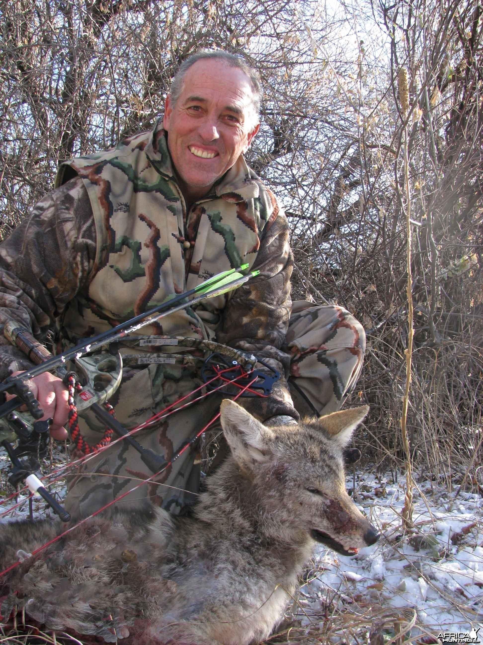 Nebraska Coyote