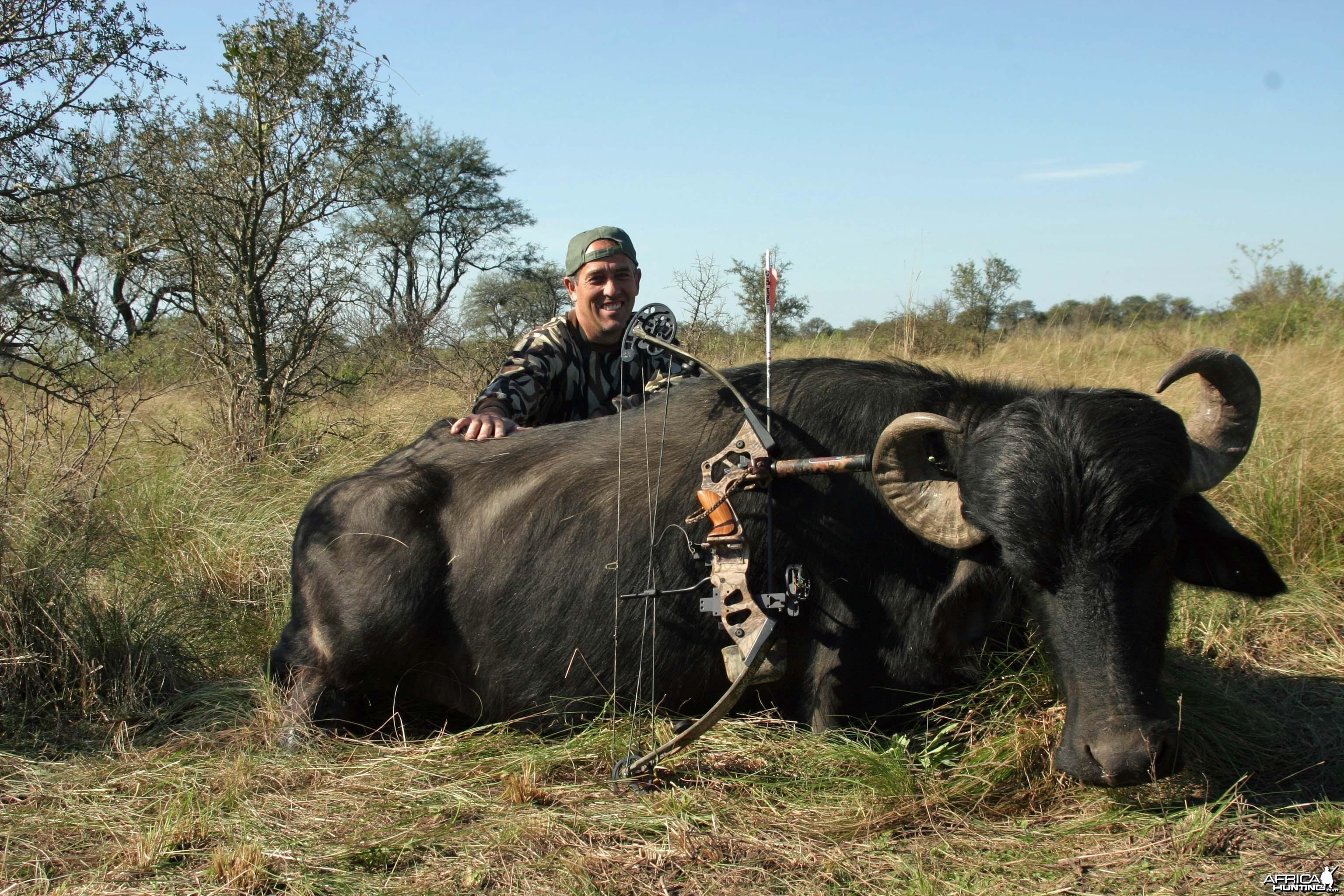 Water Buffalo-Argentina