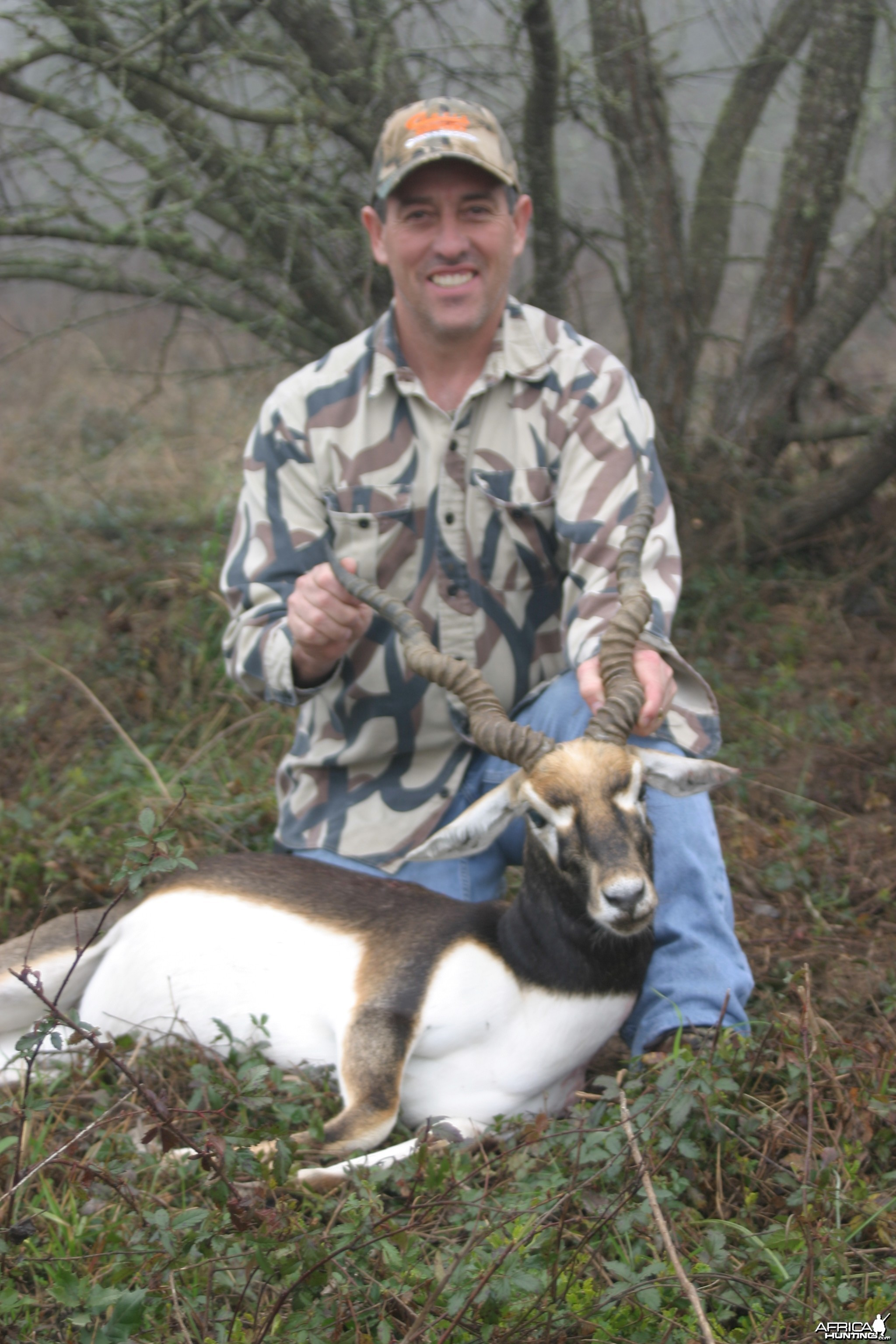 Blackbuck-Texas