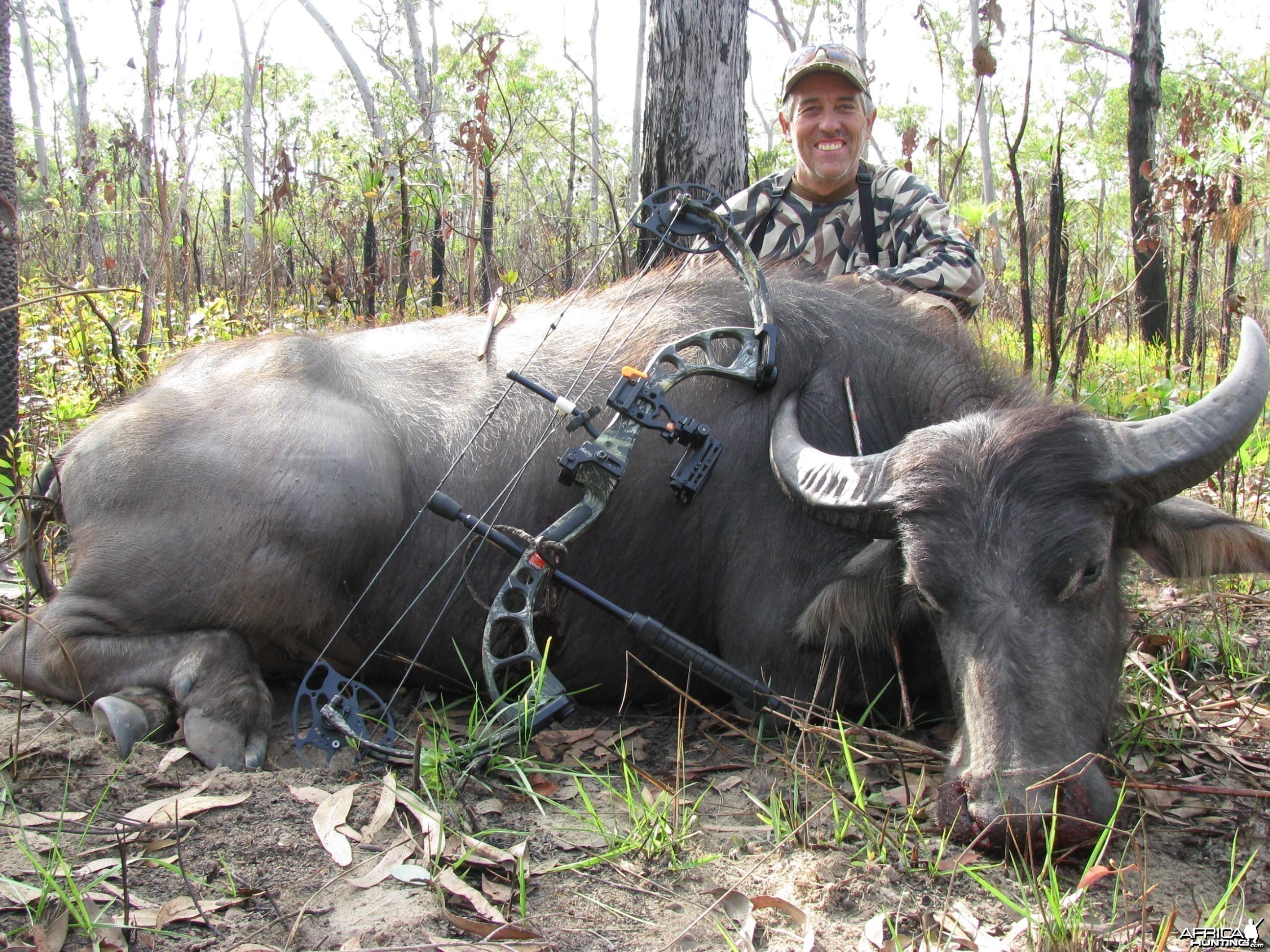 Australian Water Buffalo