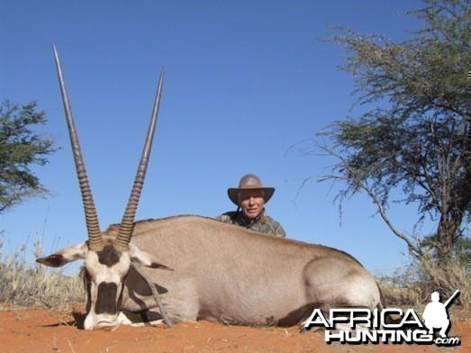 Gemsbok / Oryx