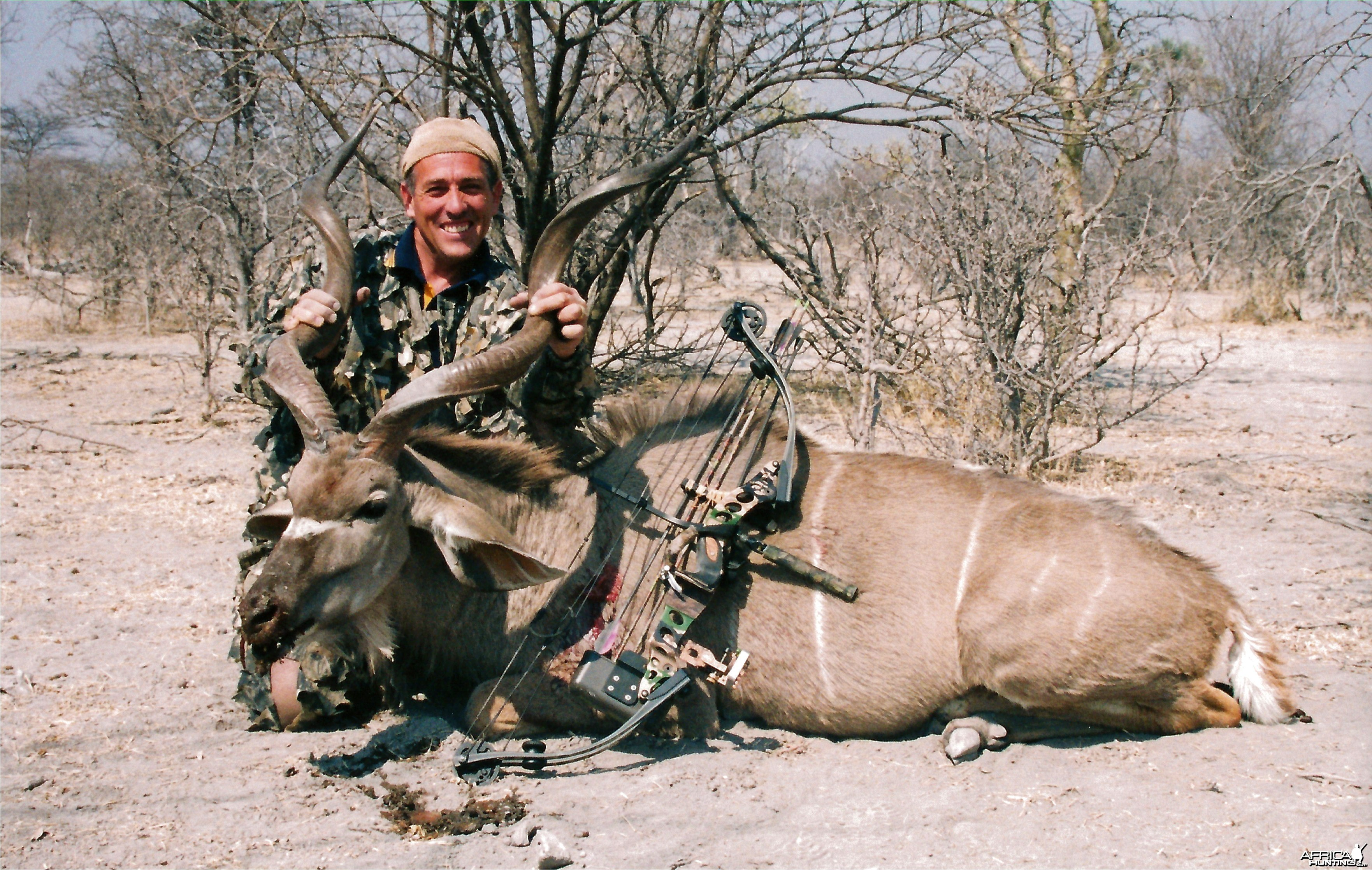 greater southern Kudu-Namibia