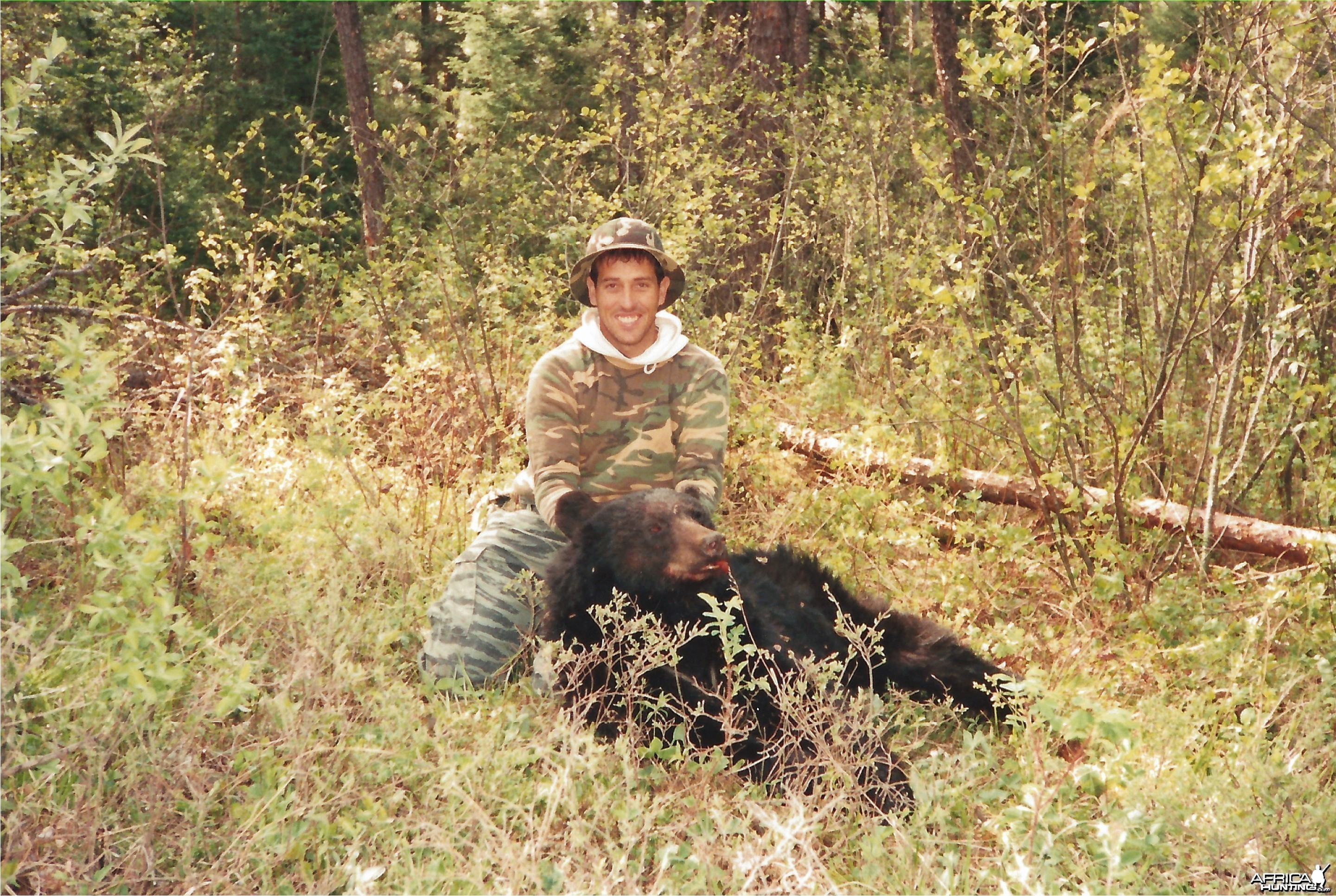 Ontario inland Black Bear