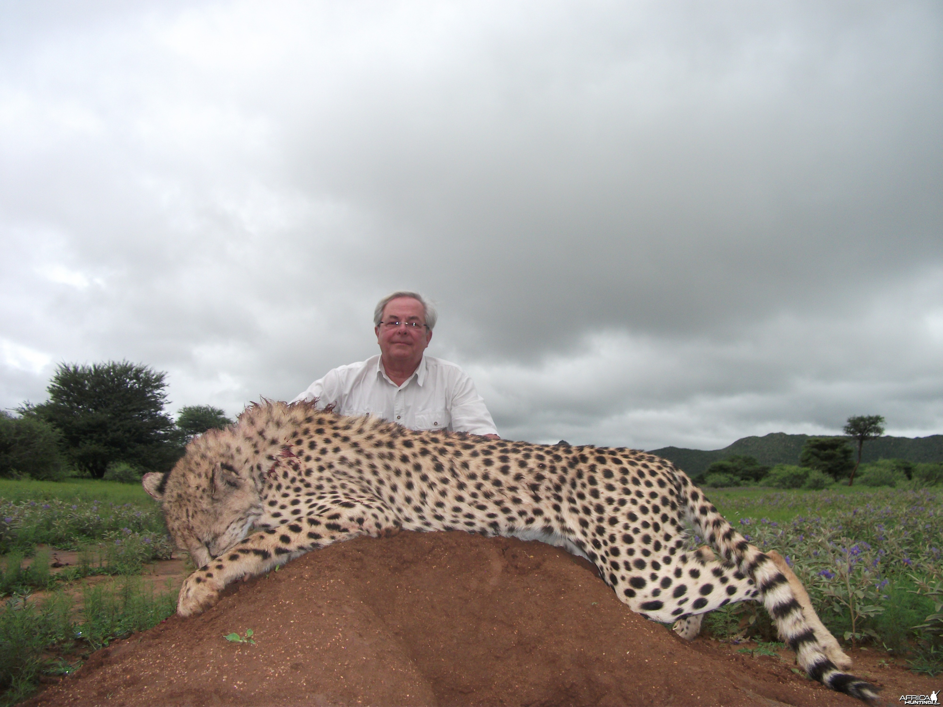 Hunting Cheetah in Namibia with Ozondjahe Hunting Safaris