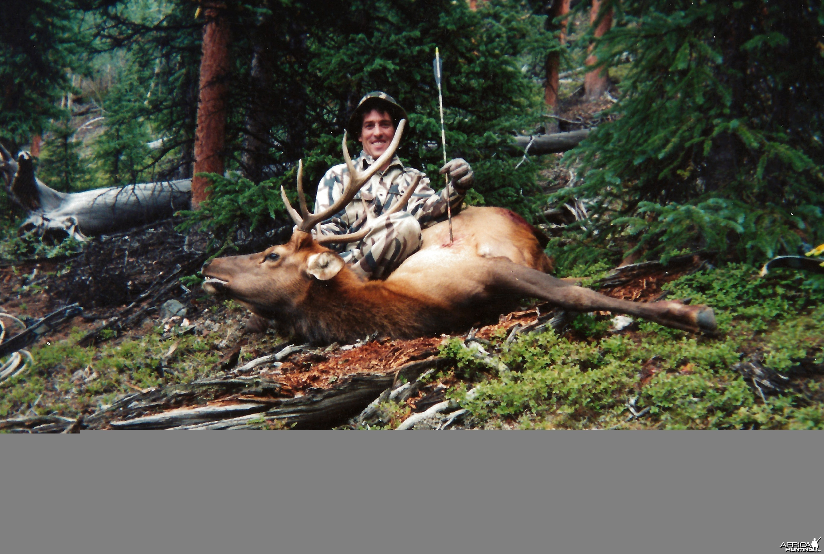 First elk with a bow