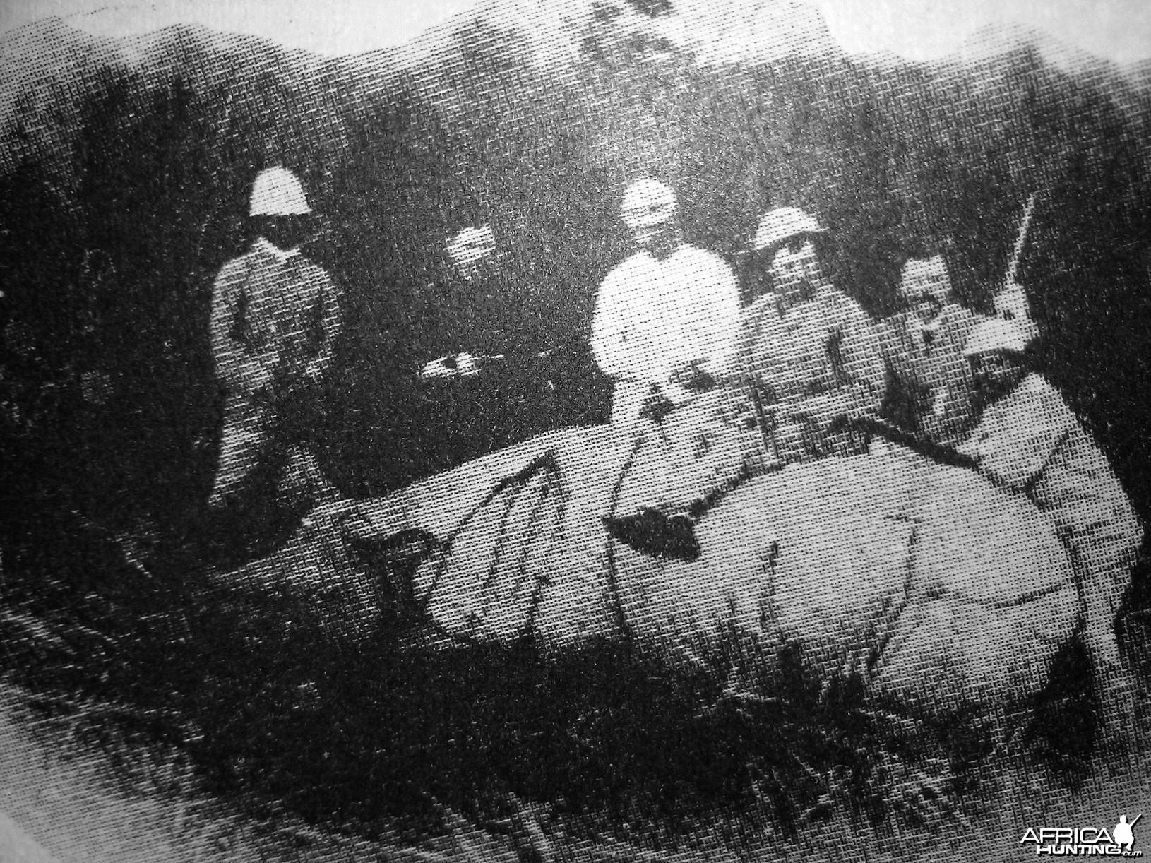Hunting Rhino 1886