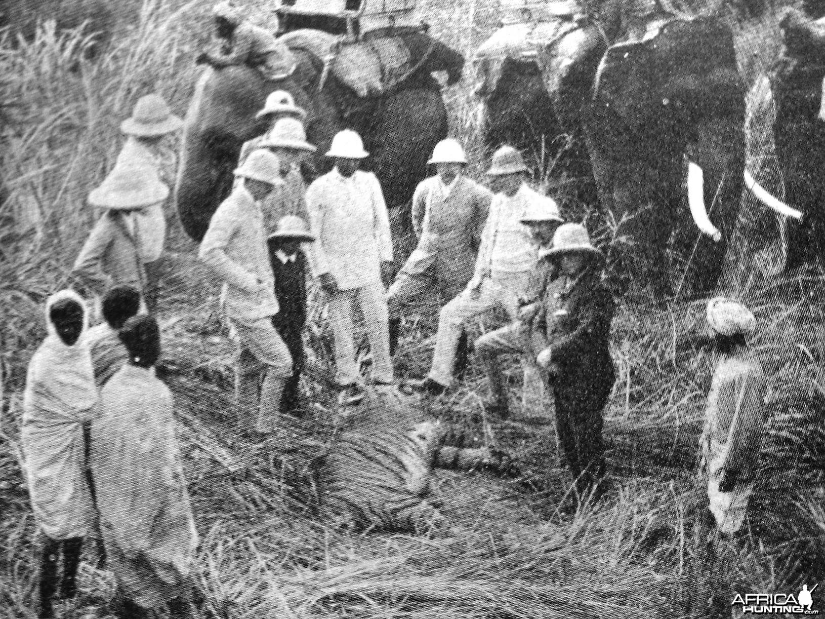 Hunting Tiger 1893