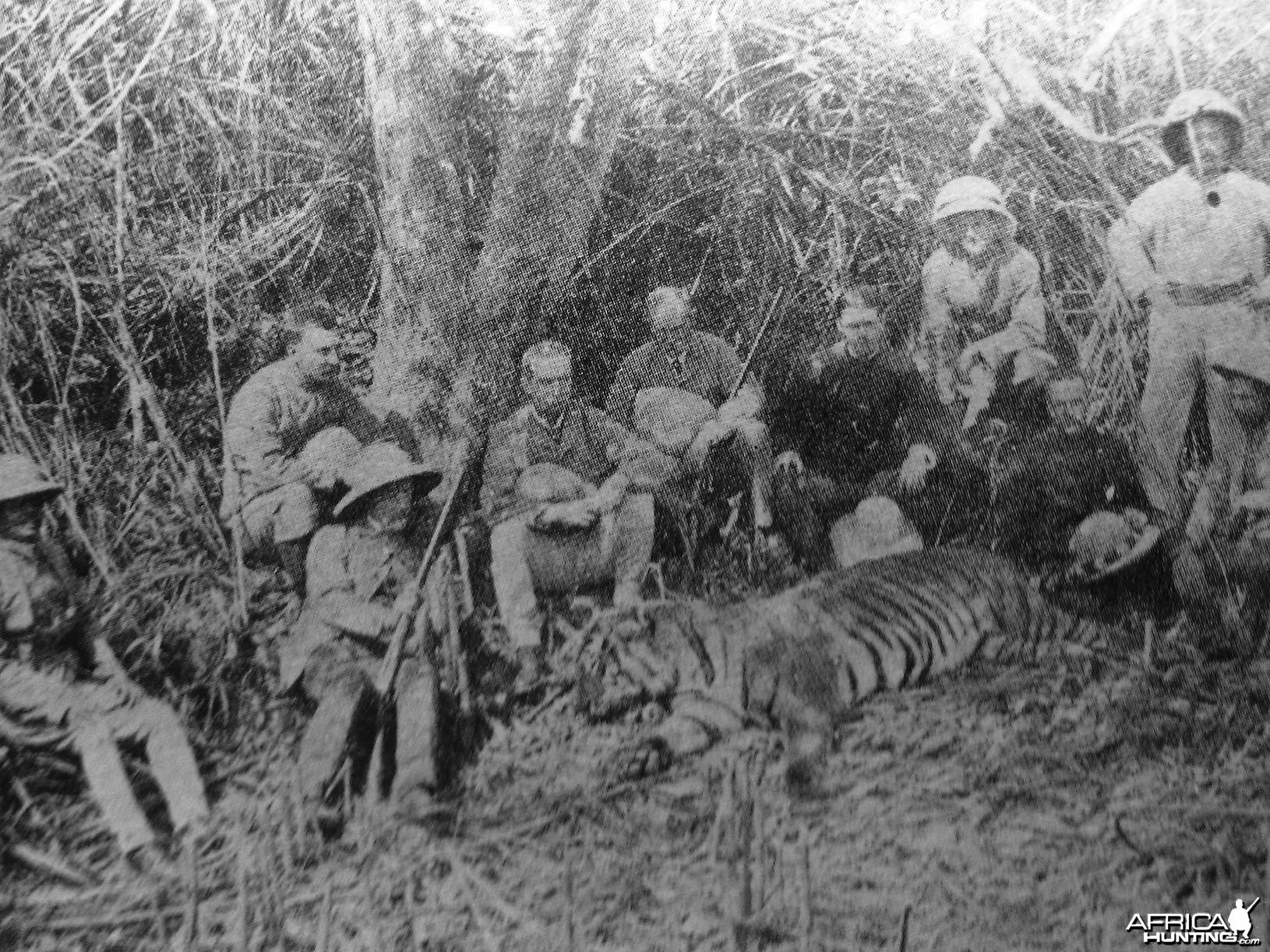 Hunting Tiger 1885