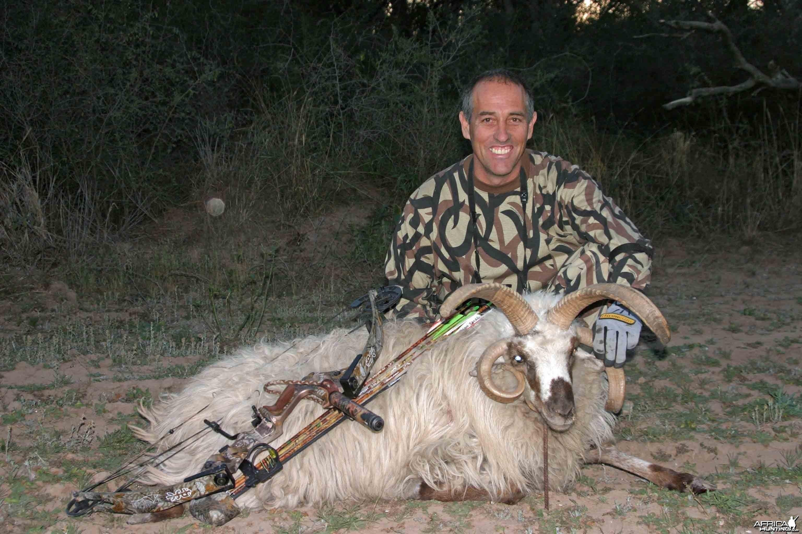Multi-horned Ram-Argentina