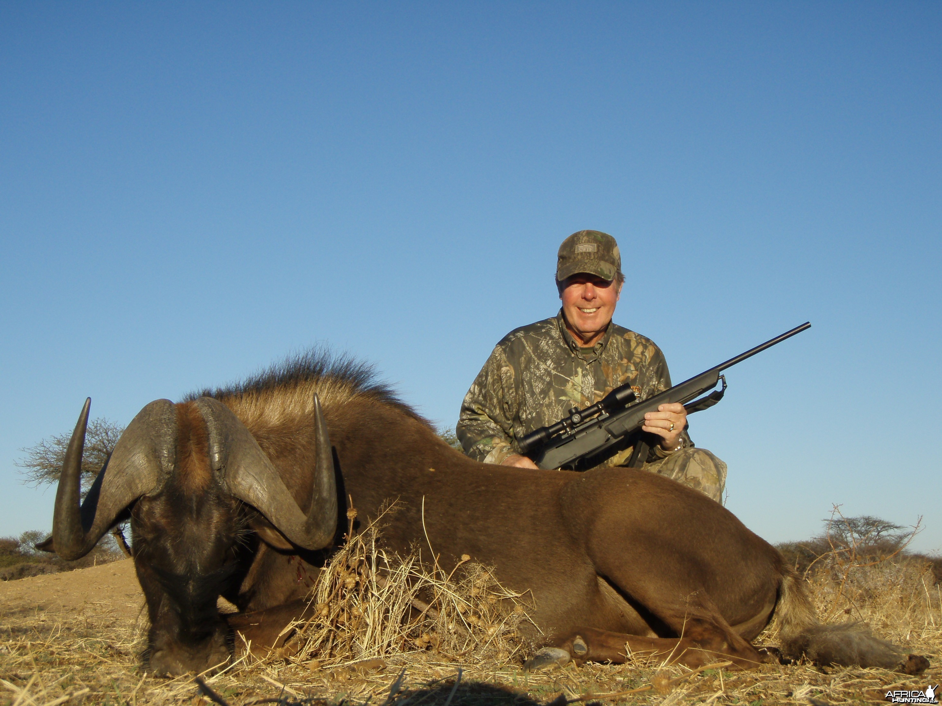 Hunting Blue Wildebeest in Namibia