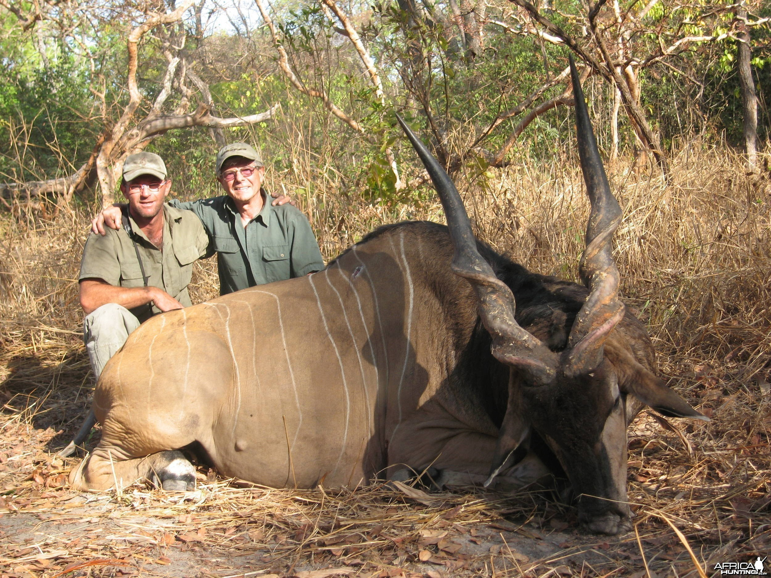 Hunting Giant Eland in CAR