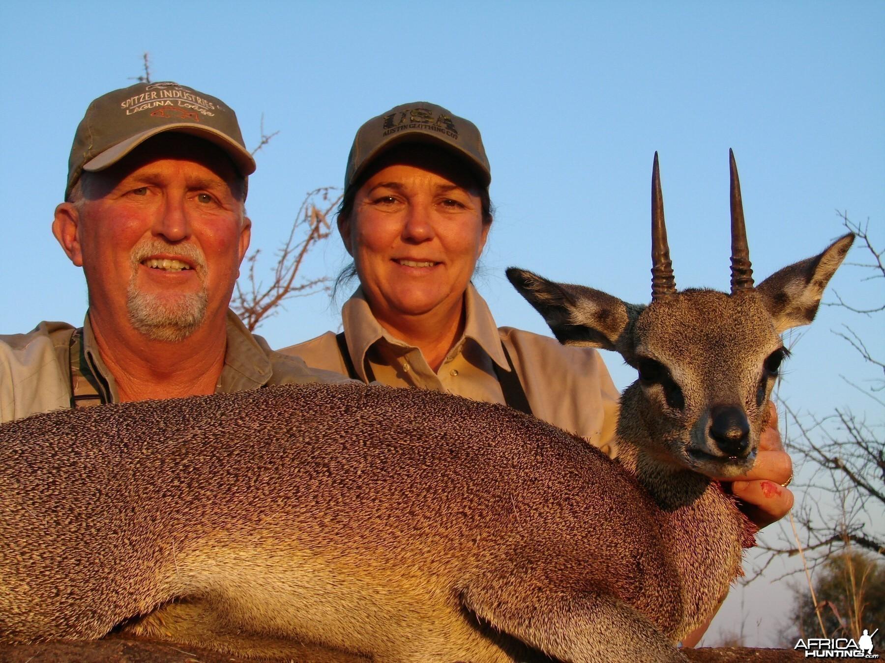 Klipspringer Zimbabwe 2007