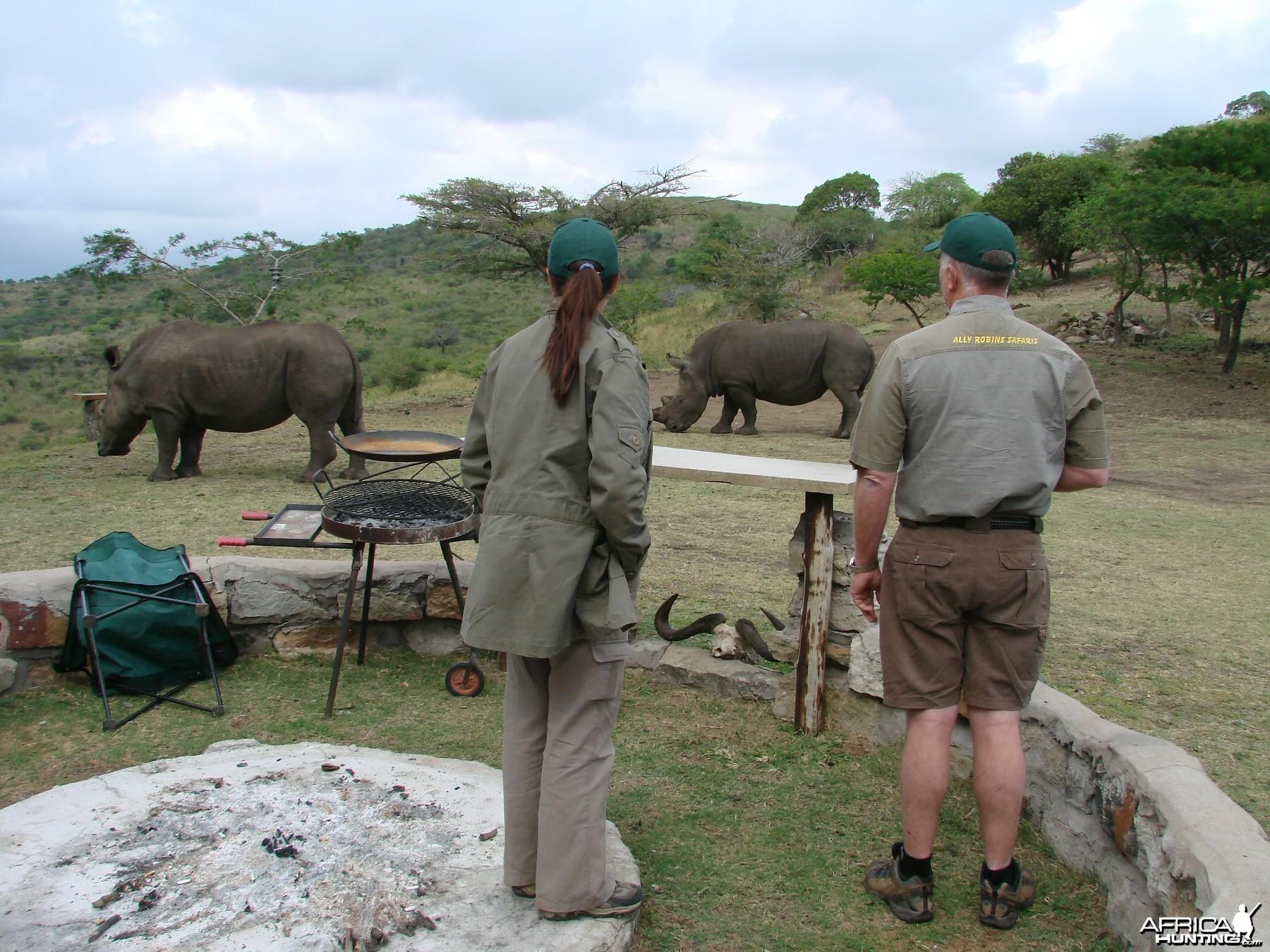 Rhino Kwa Zulu Natal