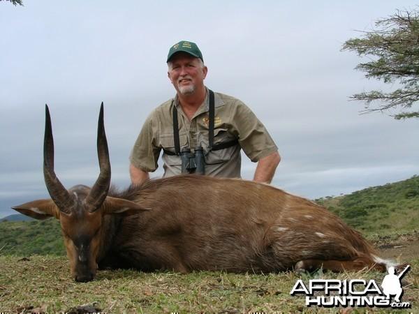 Cape Bushbuck Kwa Zulu Natal, SA 2007