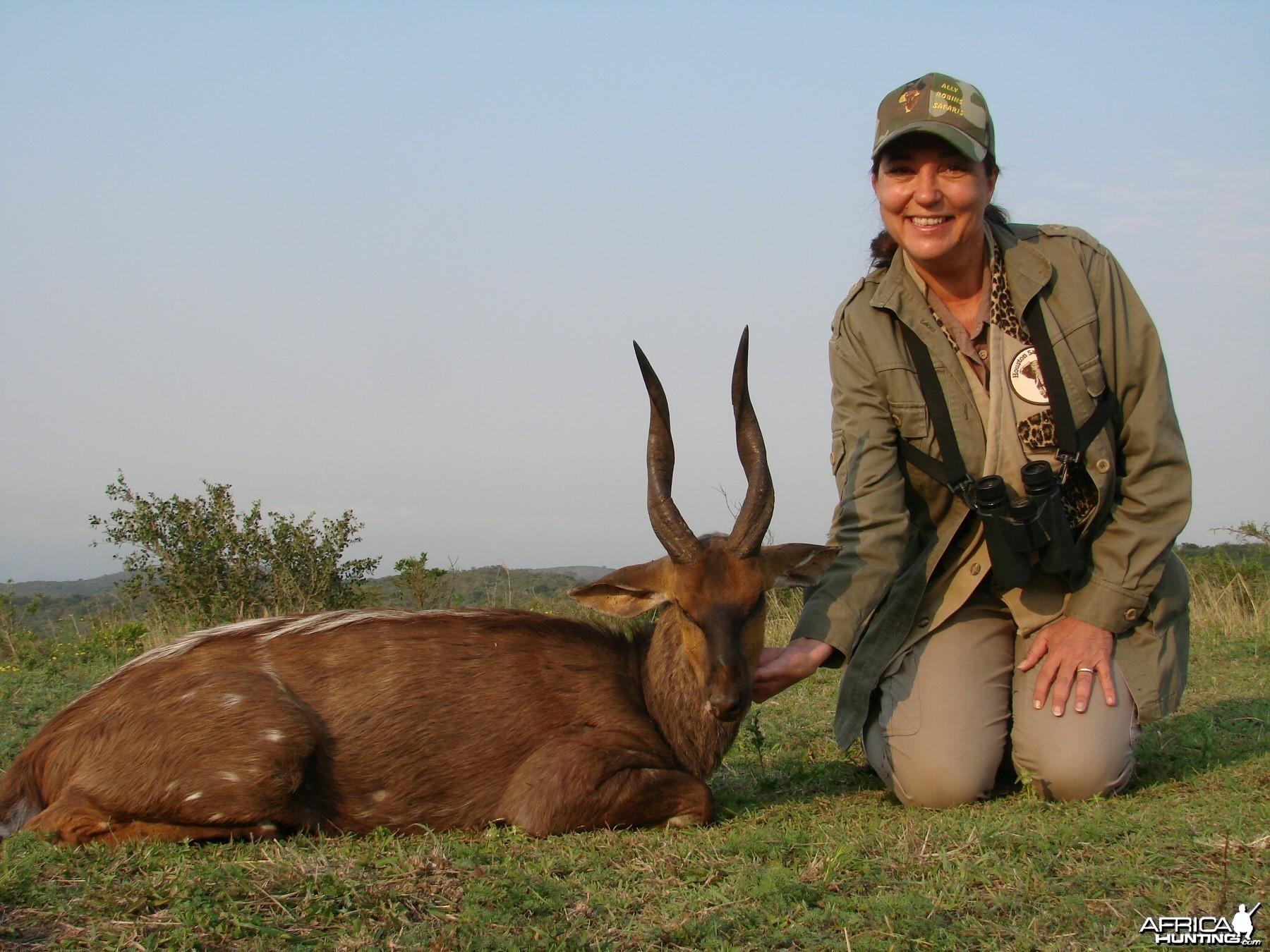 Bushbuck Kwa Zulu Natal, SA 2007