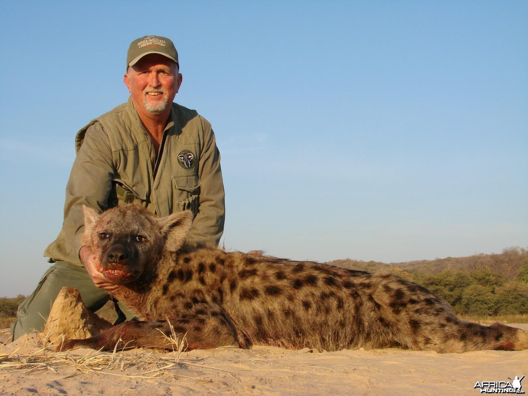 Spotted Hyena Charisa, Zimbabwe 2007