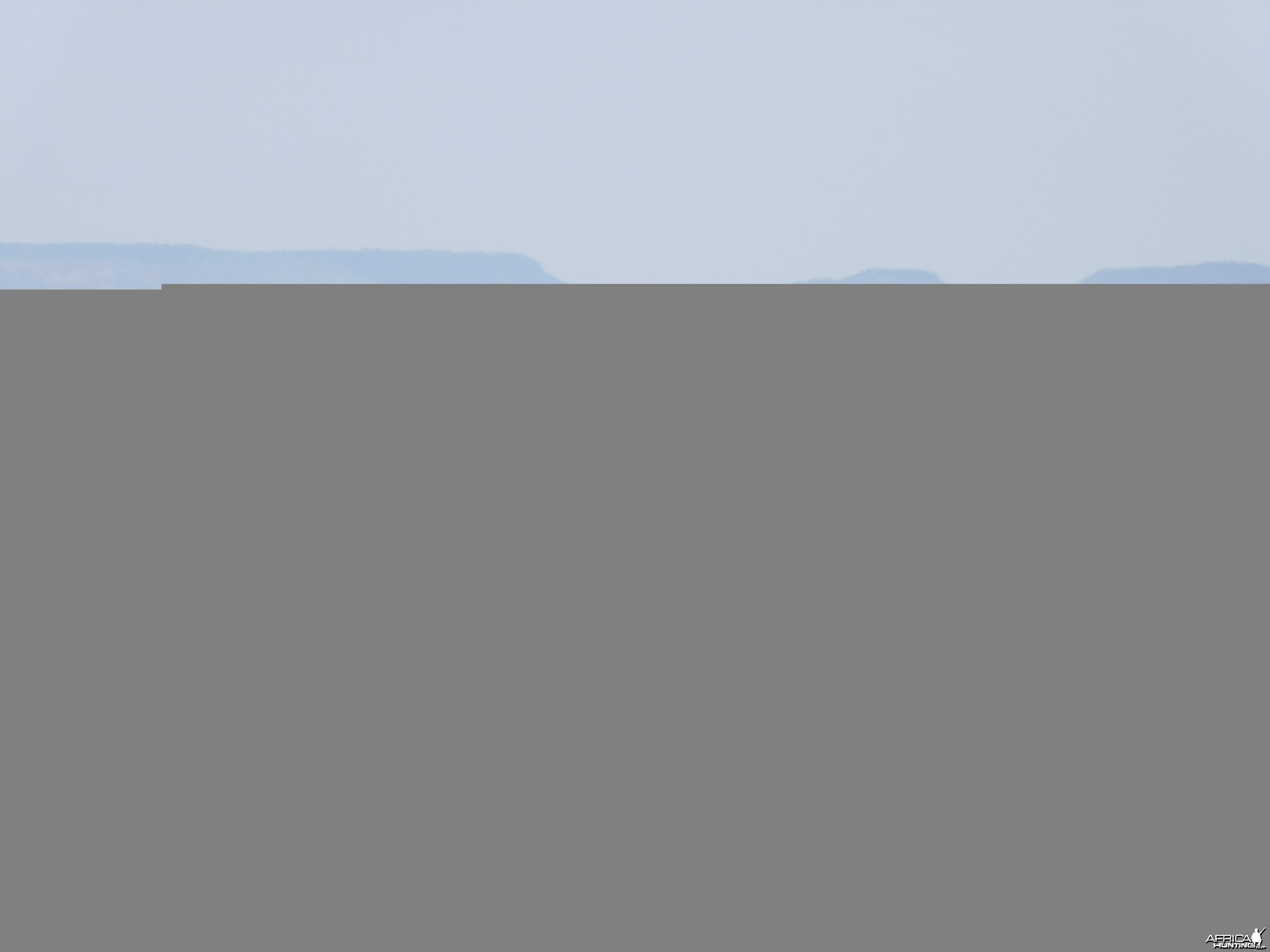 Hartmann's Zebra Damaraland Namibia