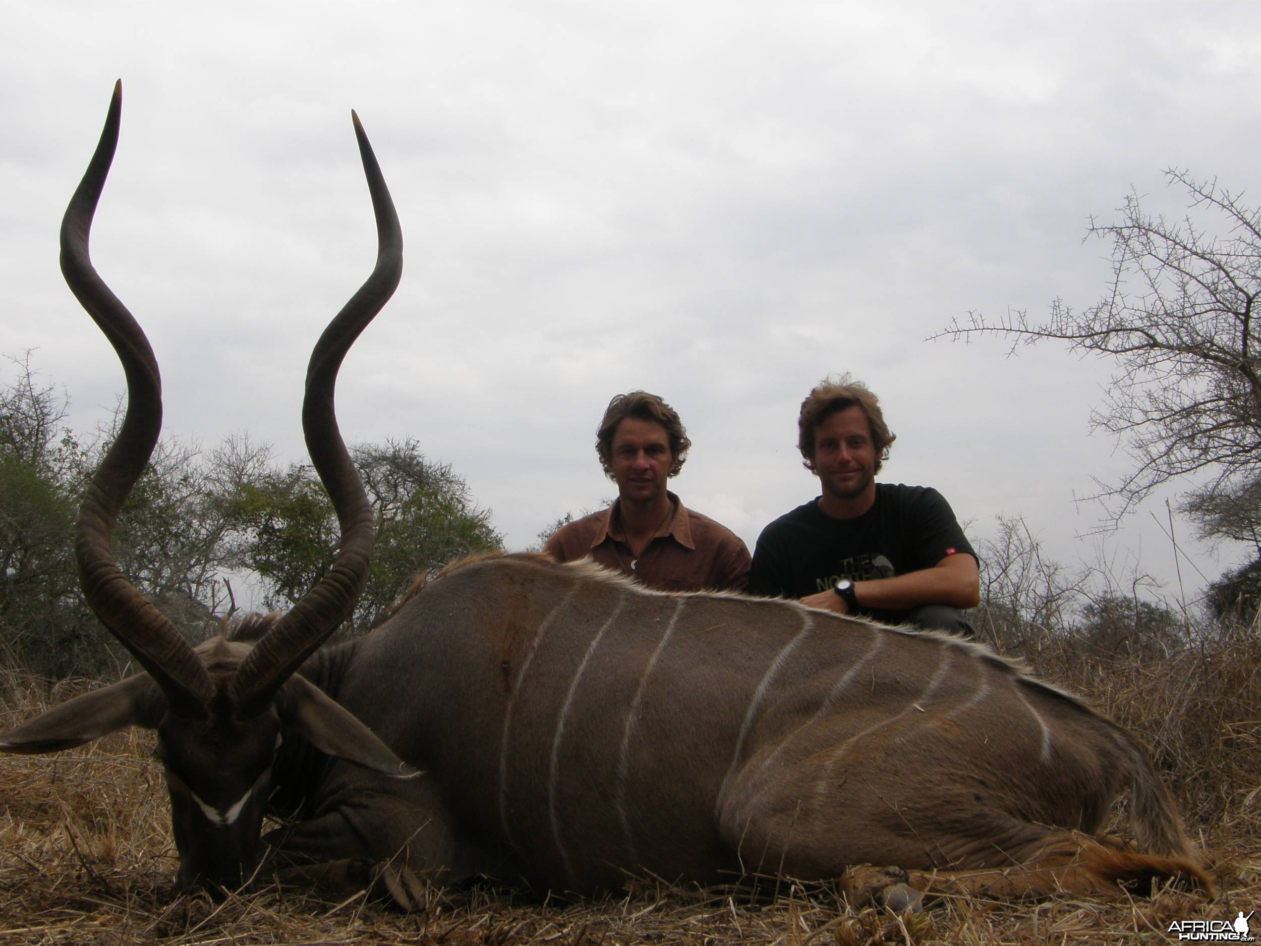 54 inch Kudu Massai land