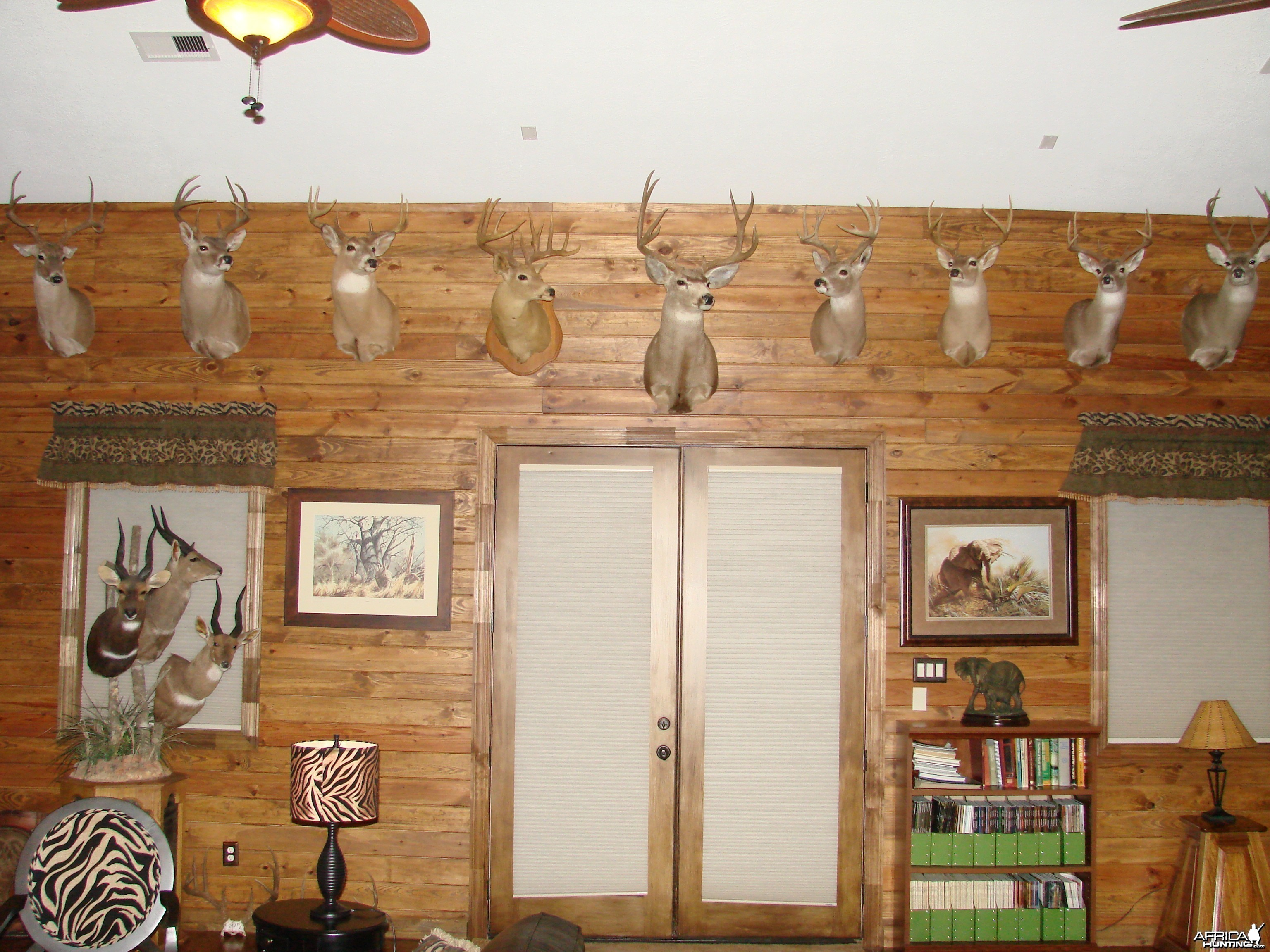 Trophy Room - Whitetail/Mule Deer wall
