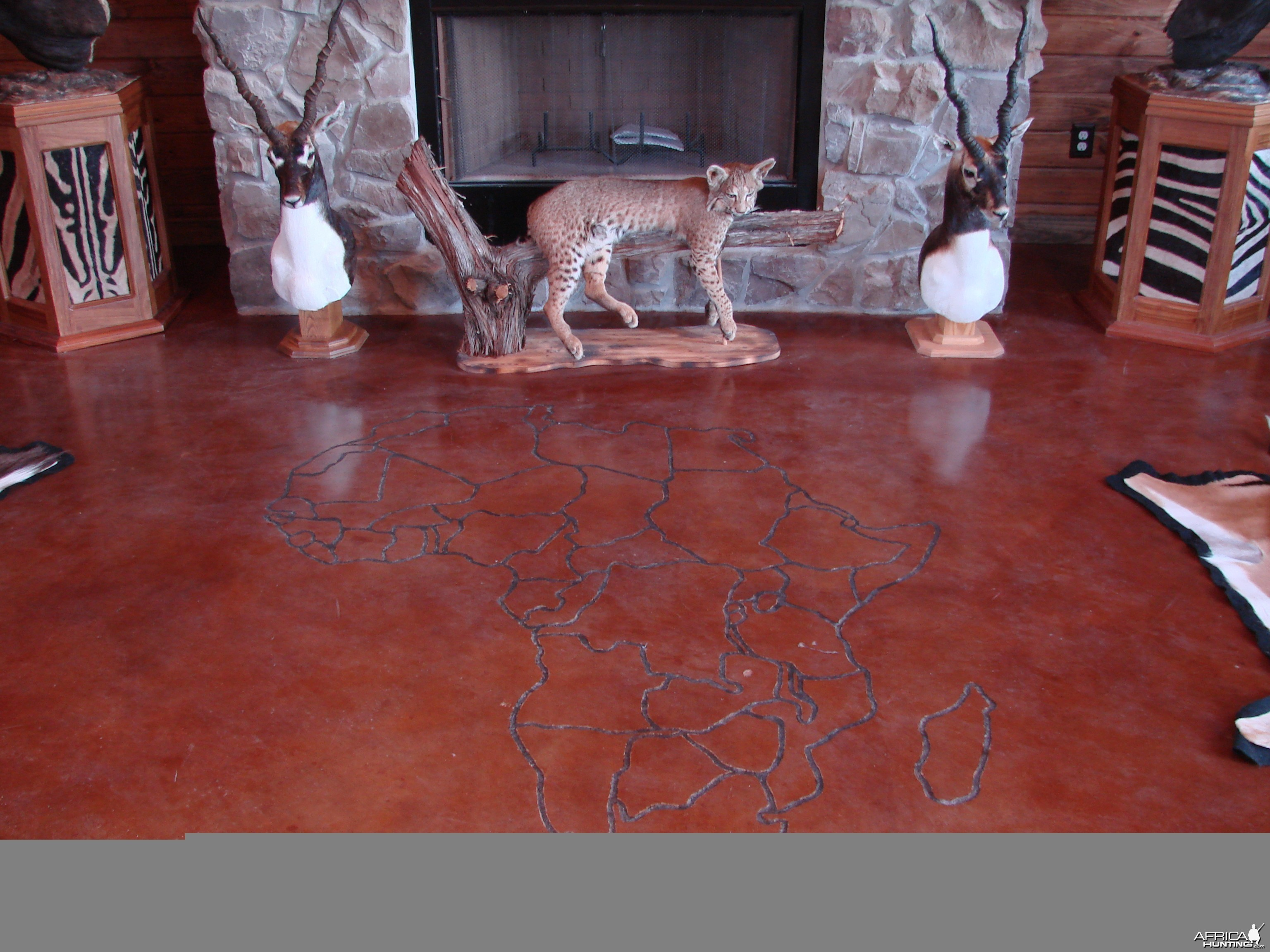 Trophy Room - Africa etched in floor