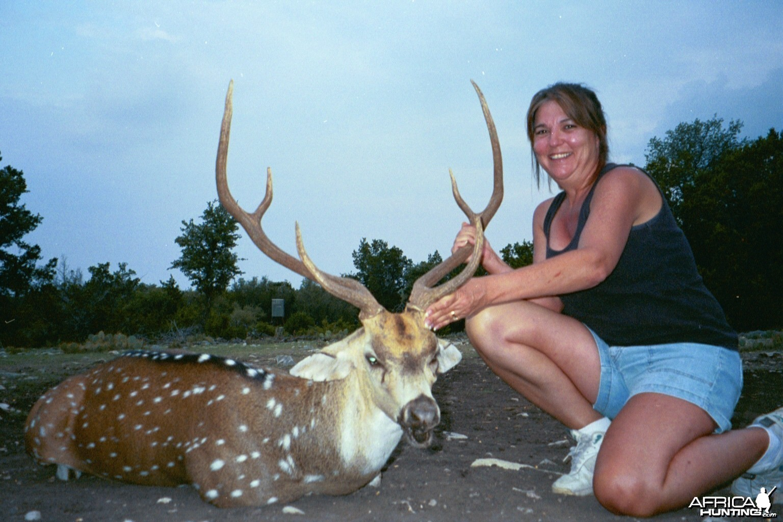 Sonora, TX Sandy's Axis buck 2009