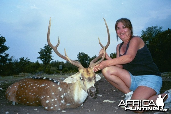 Sonora, TX Sandy's Axis buck 2009