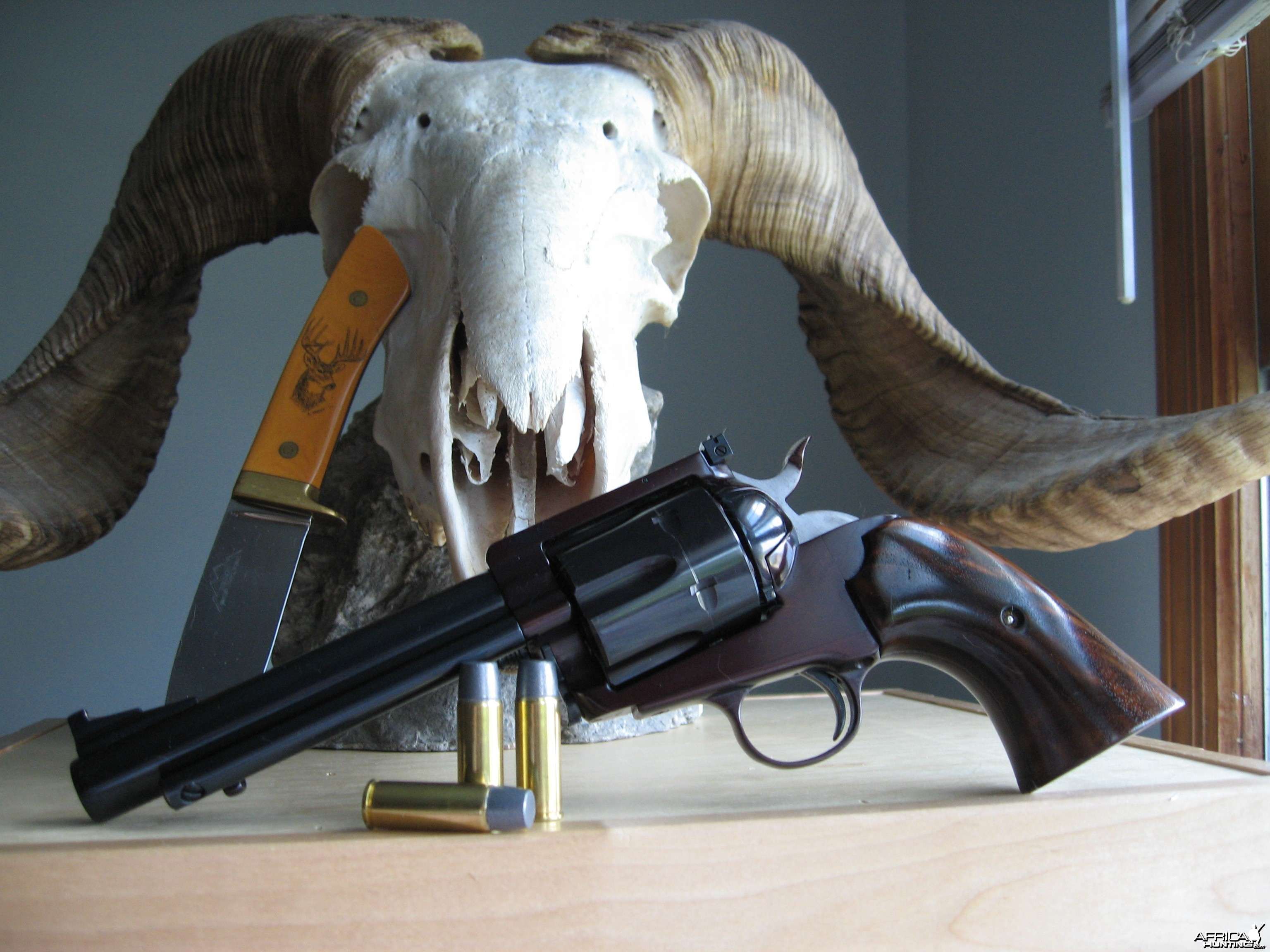 45 Colt