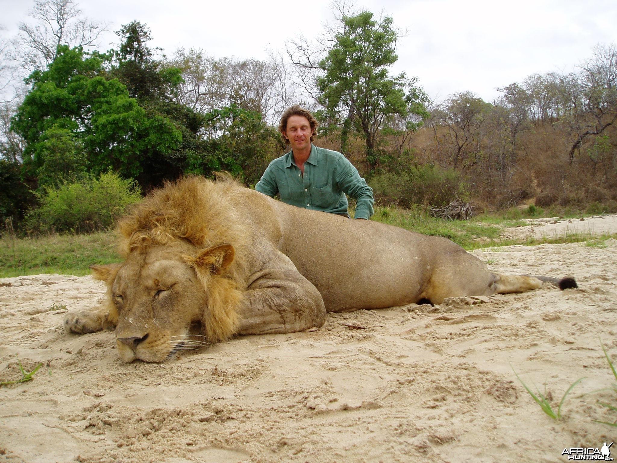 Chasse Lion Selous Tanzanie