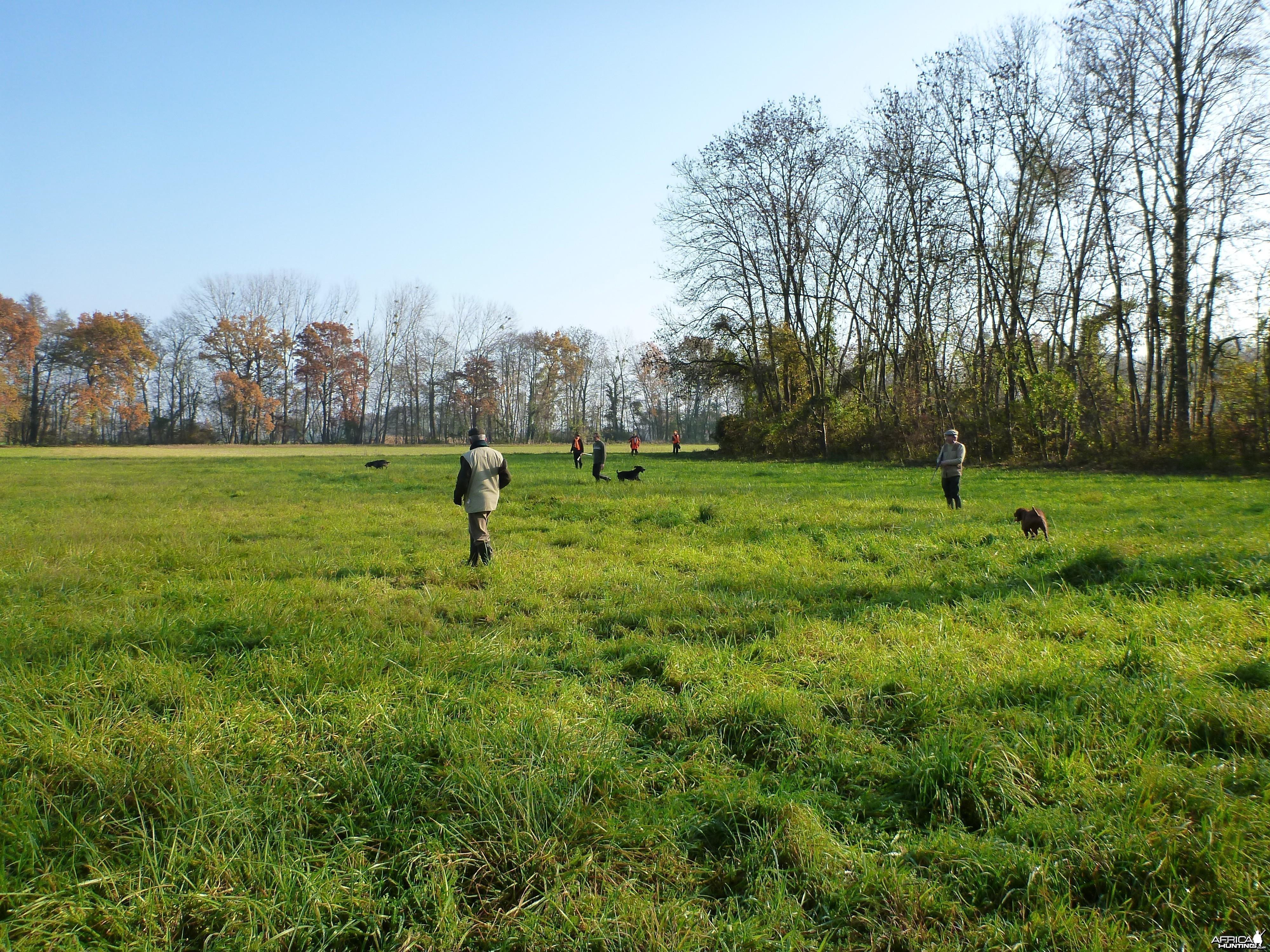 Hunting in France