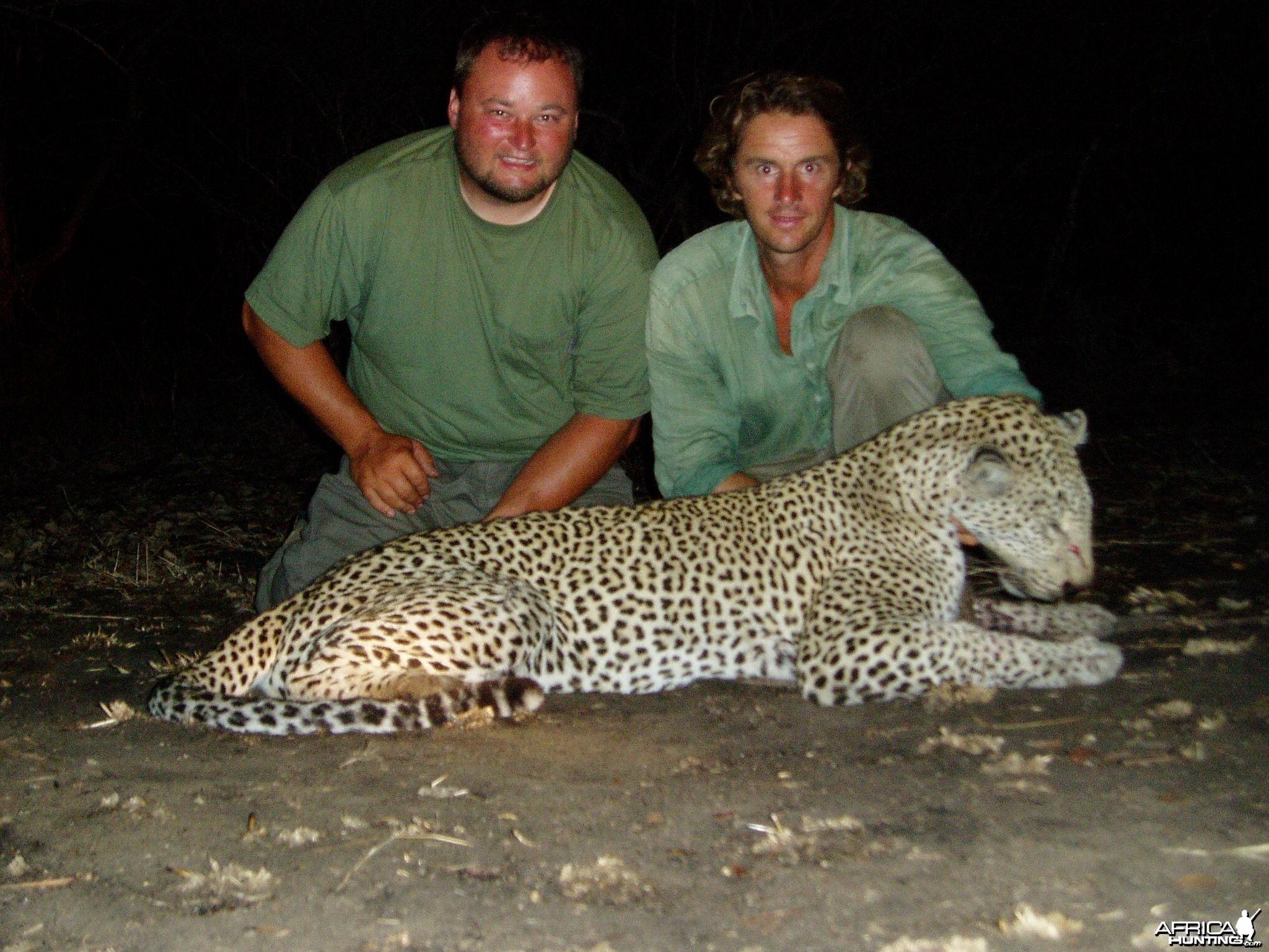 Hunting Leopard Selous Tanzania