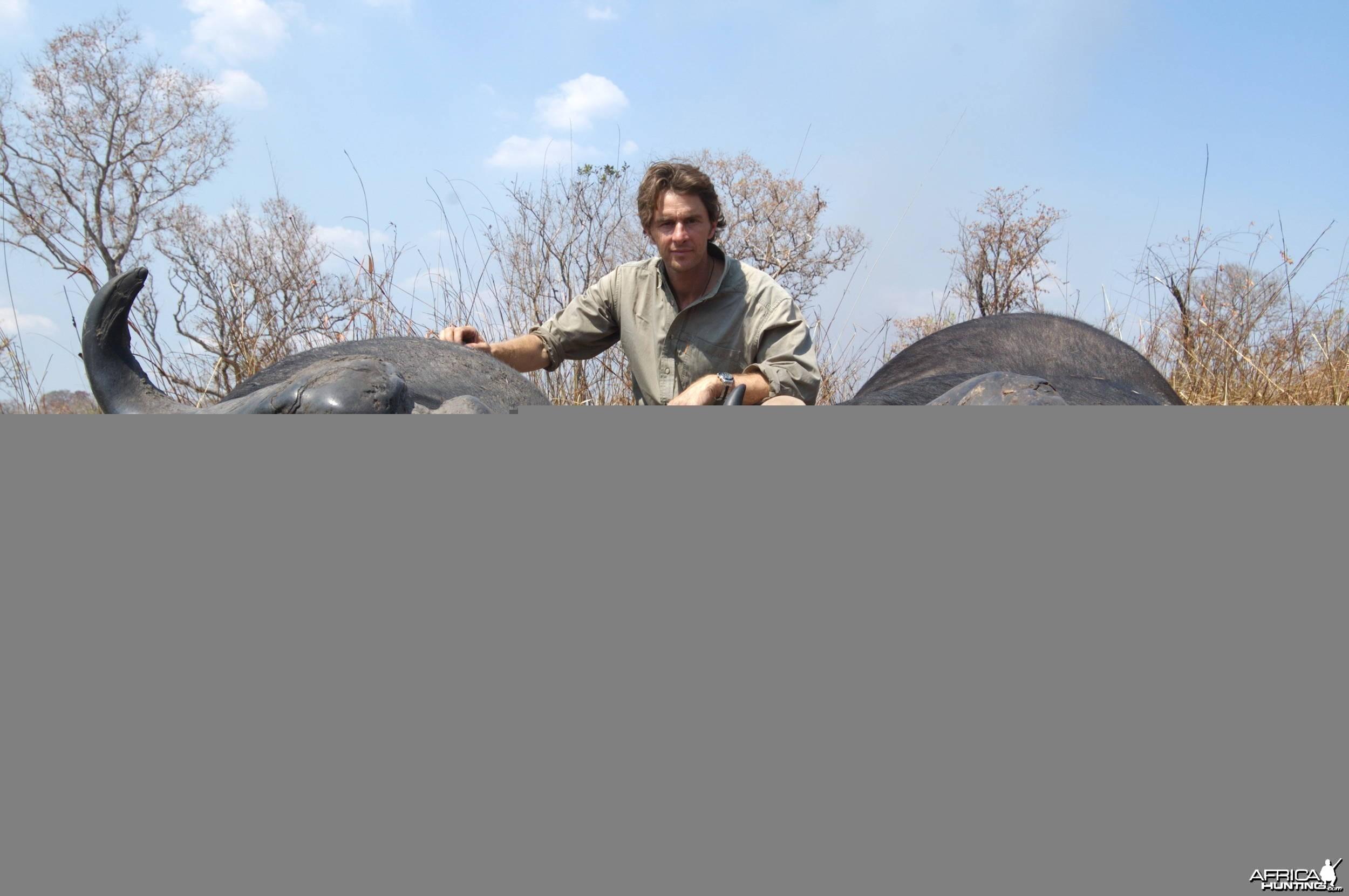 Hunting Buffalo Selous Tanzania