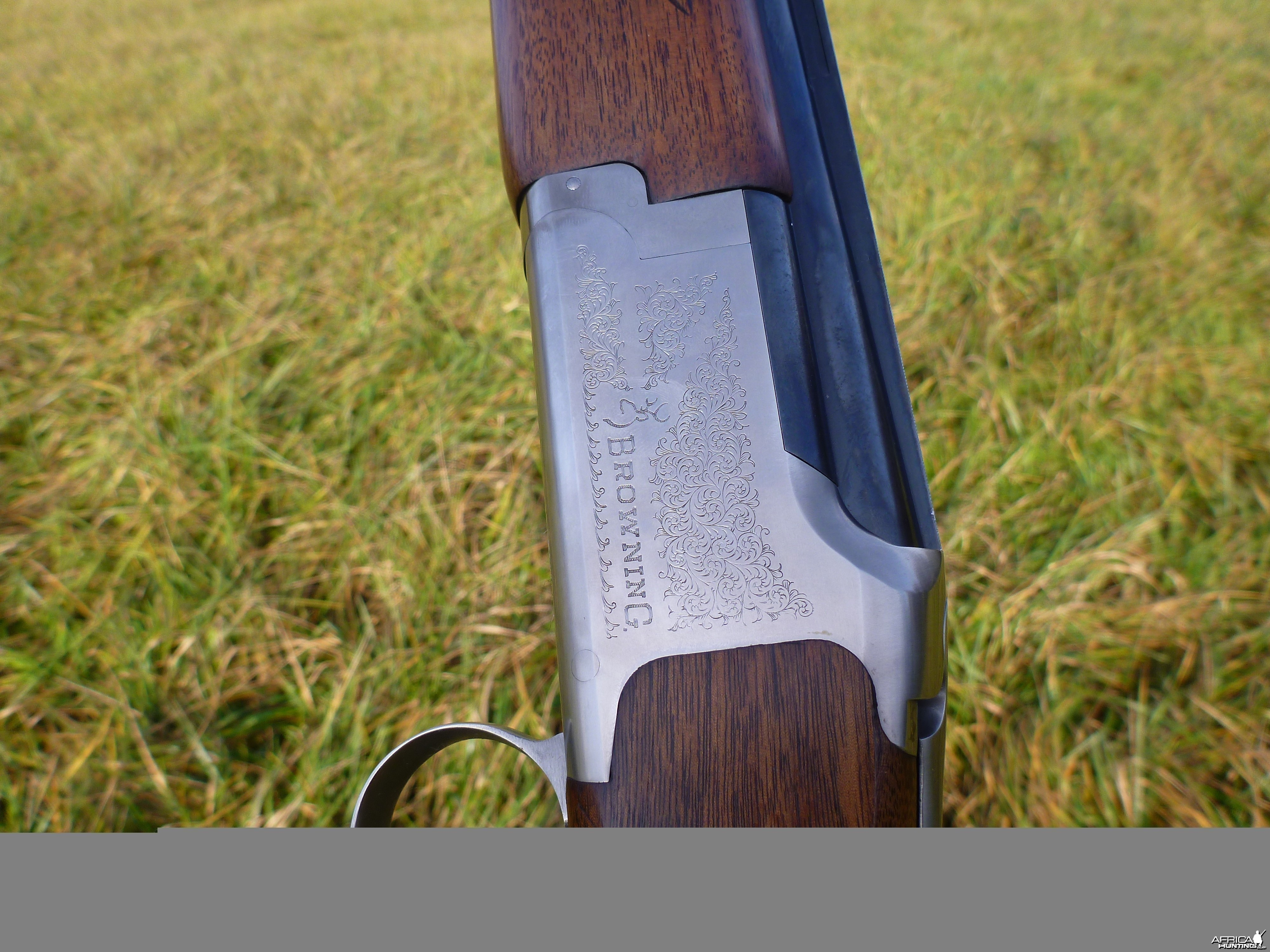 20 Gauge Browning