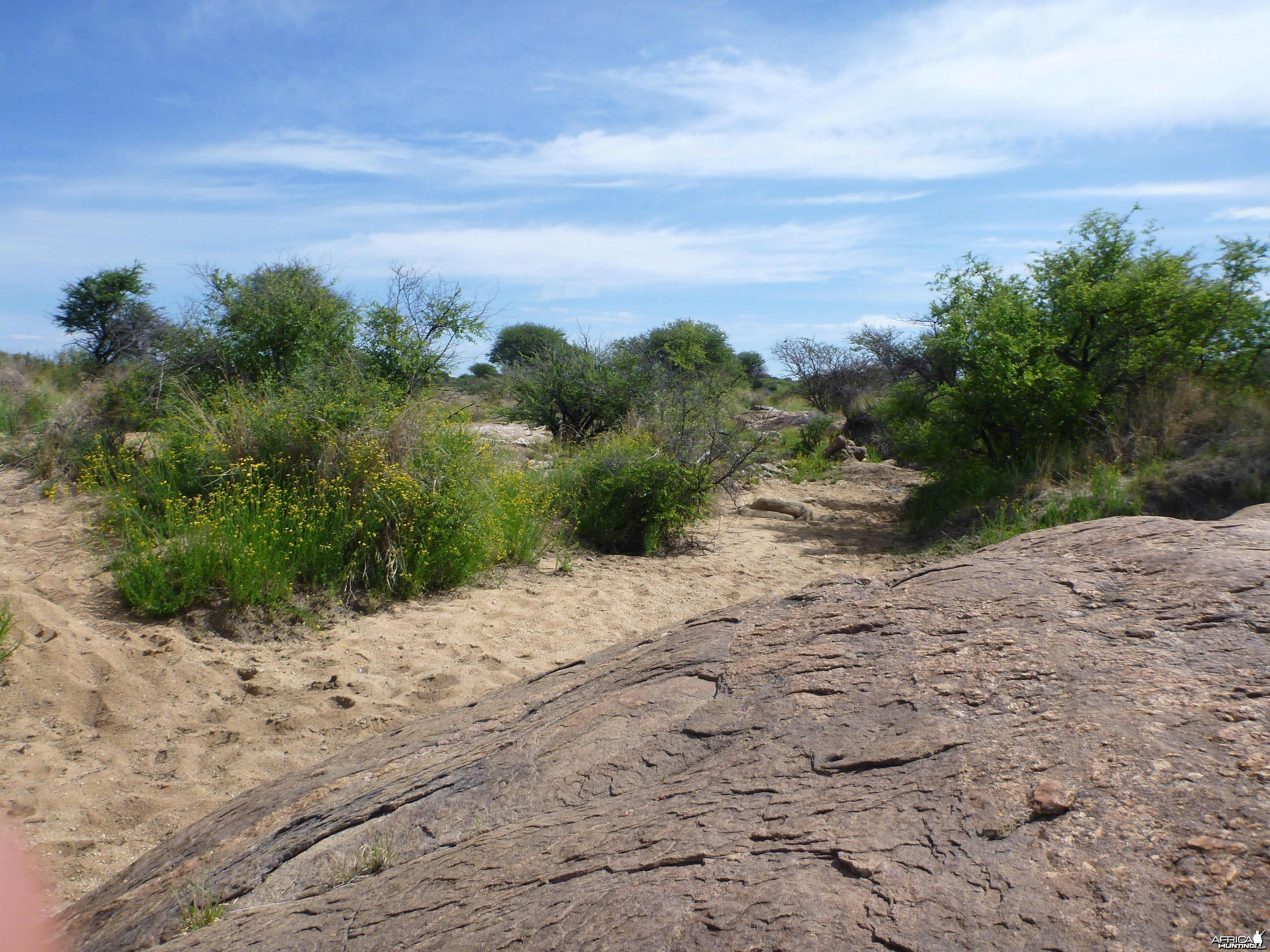 Riverbed Namibia