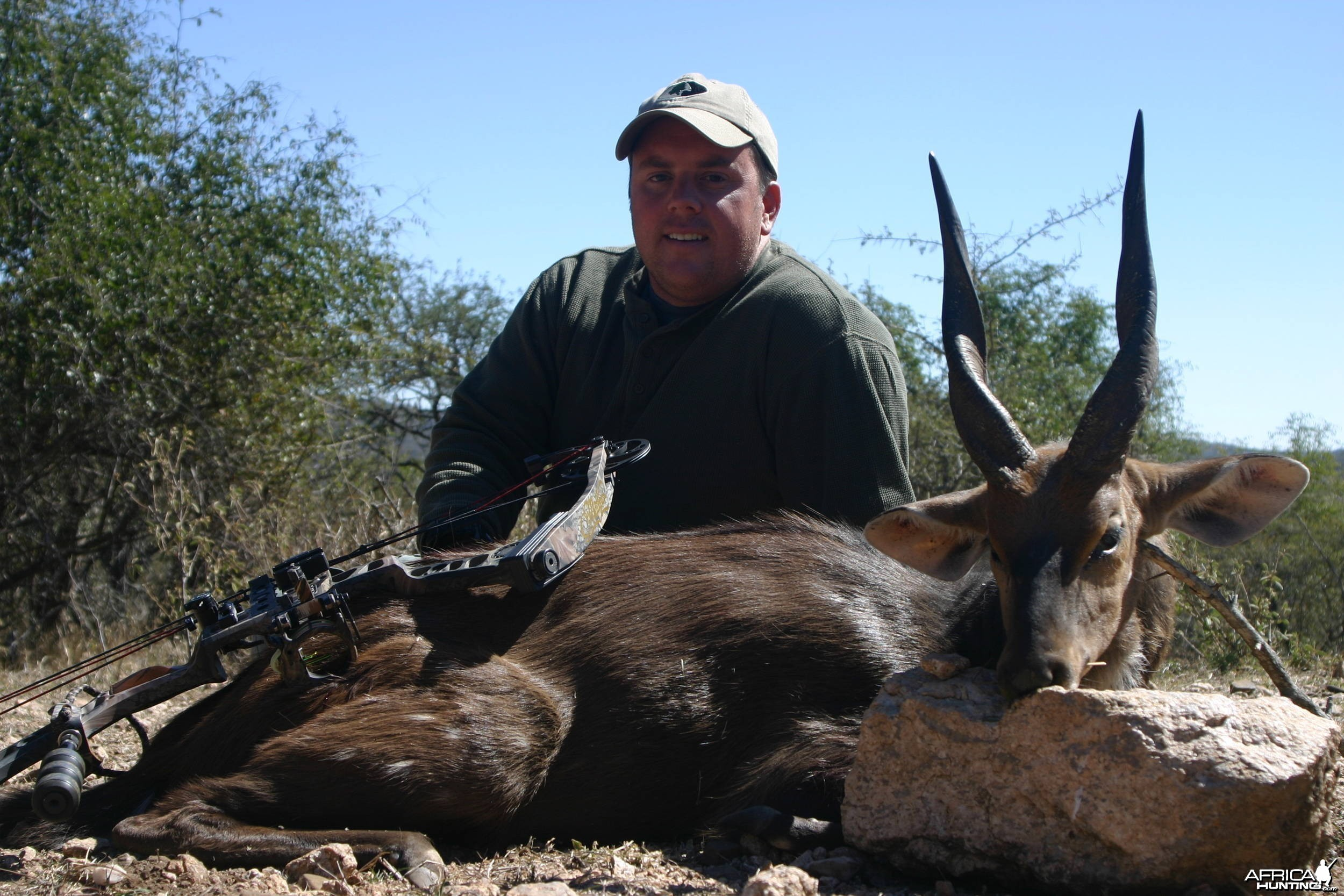 Bushbuck - First african animal