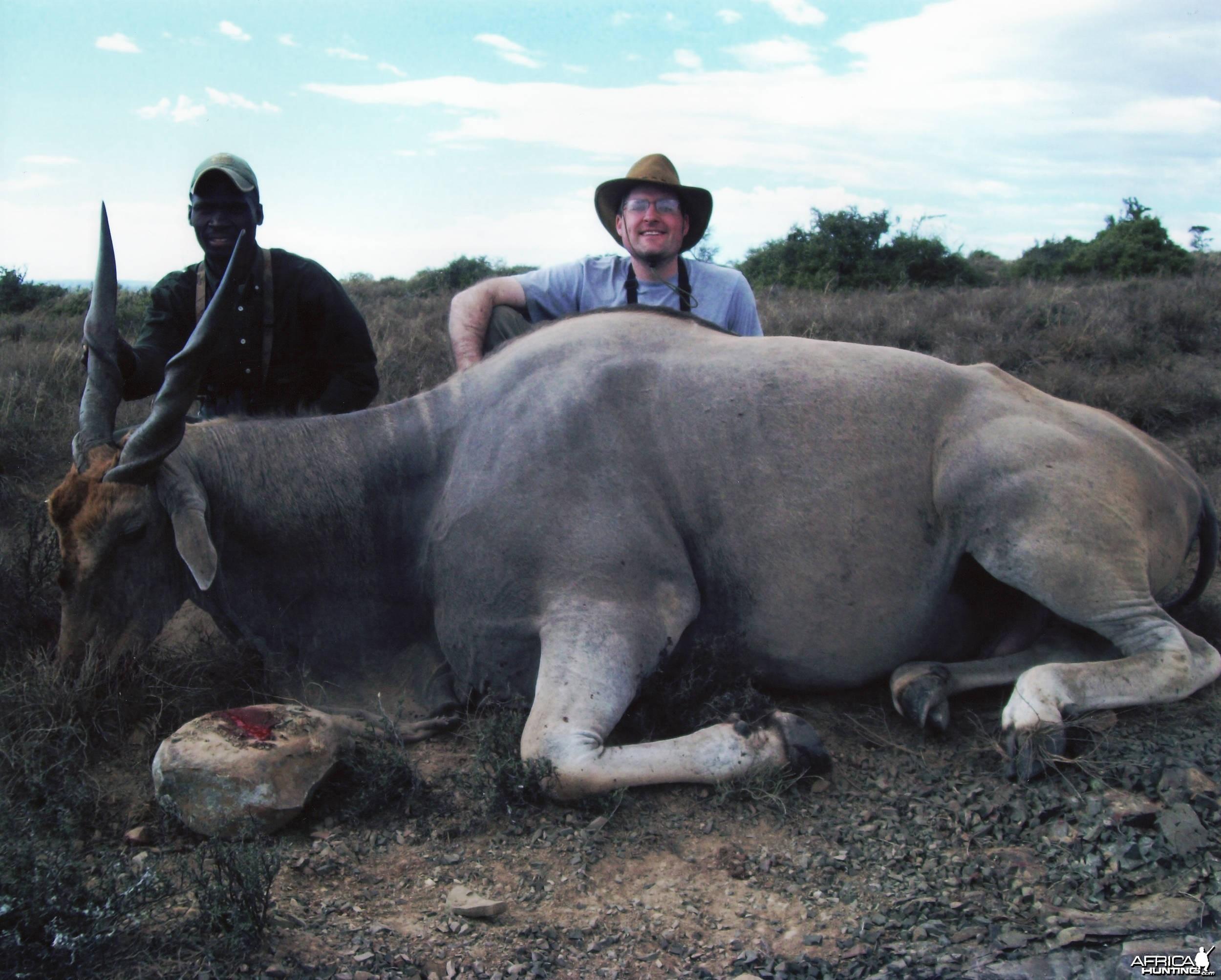 Russ Field Safaris - Cape Eland (30 inches long)