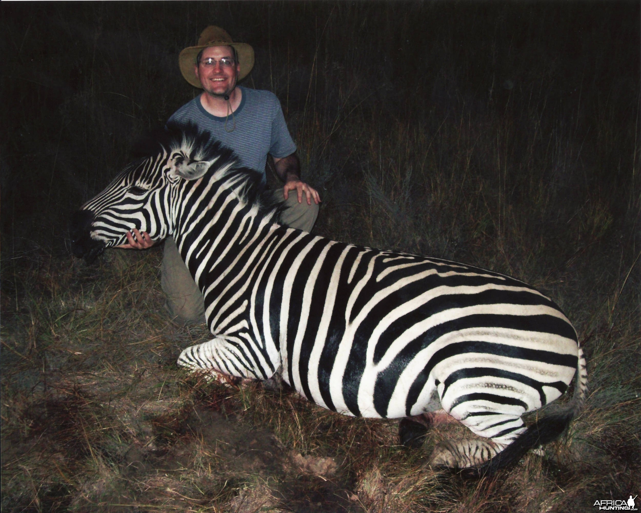 Burchell Zebra - Mhimbi Safari
