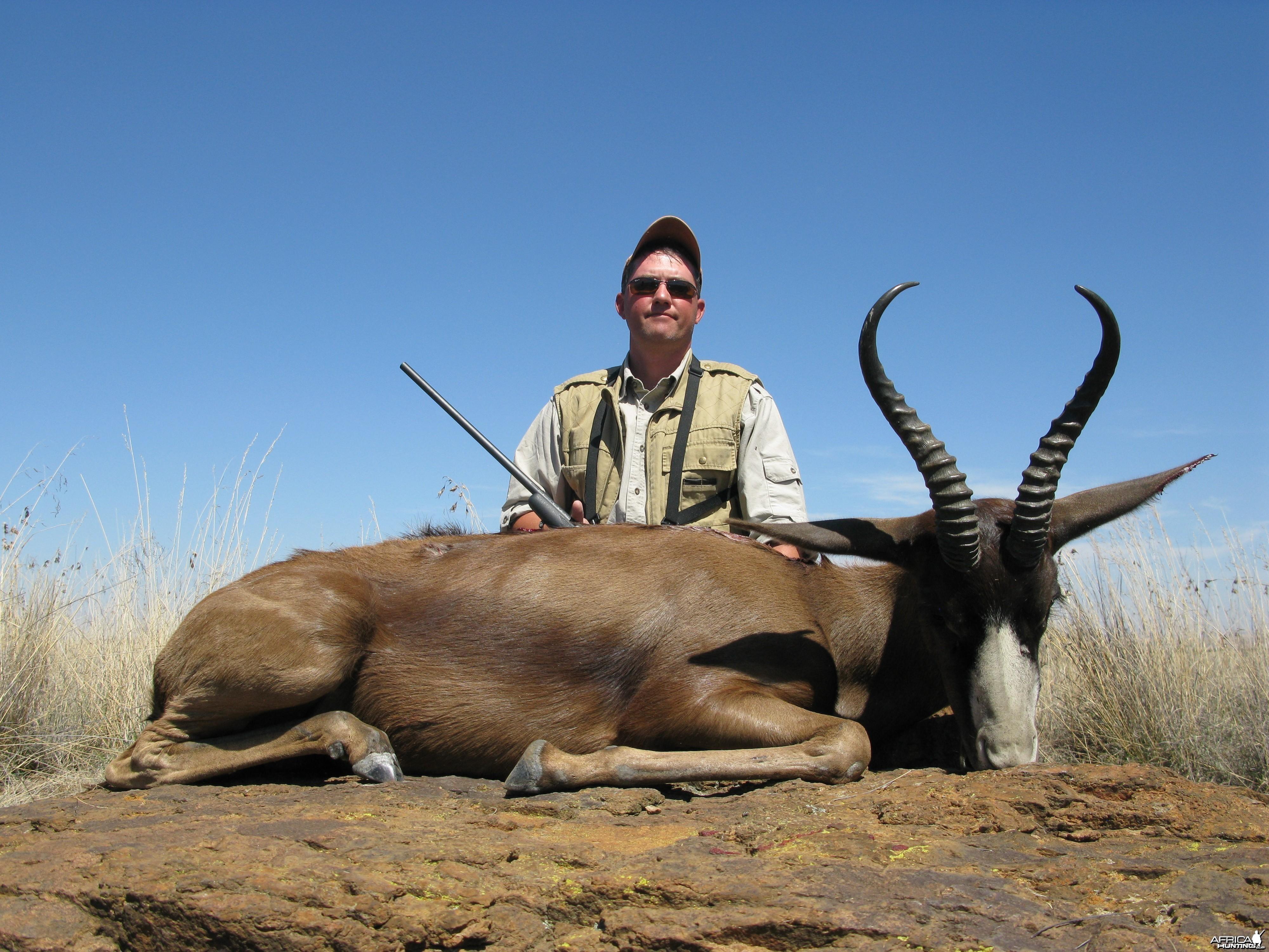 Black Springbok