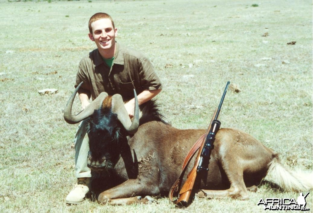 Andy - Black Wildebeest 1996