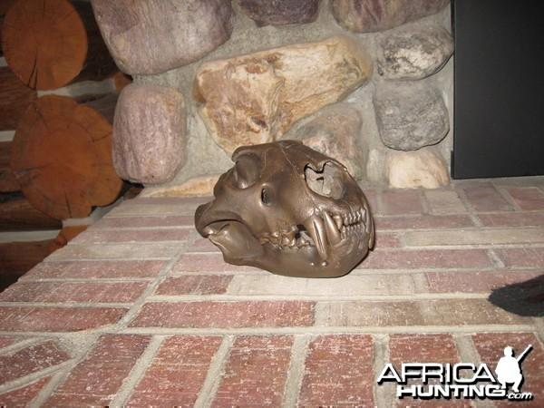 lioness skull,bronsed from jonas bros.