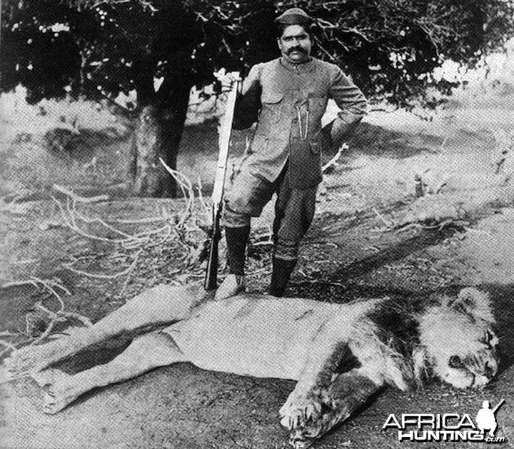 Lion India
